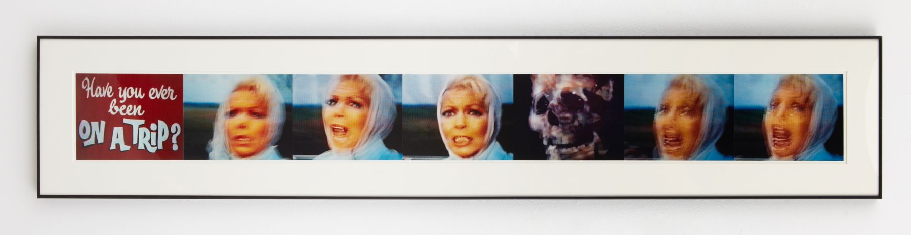 """""""have you ever been on a trip?"""" + series of portraits of a woman with skull by john waters"""