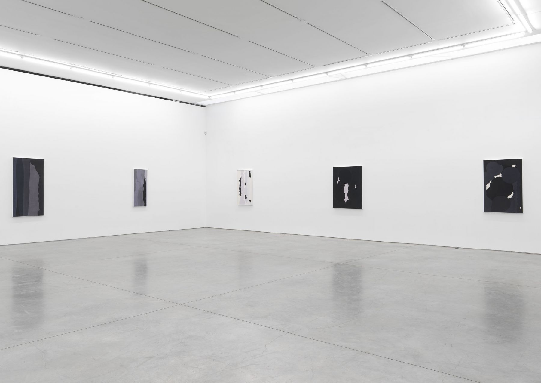 Anthony Pearson (Installation View)