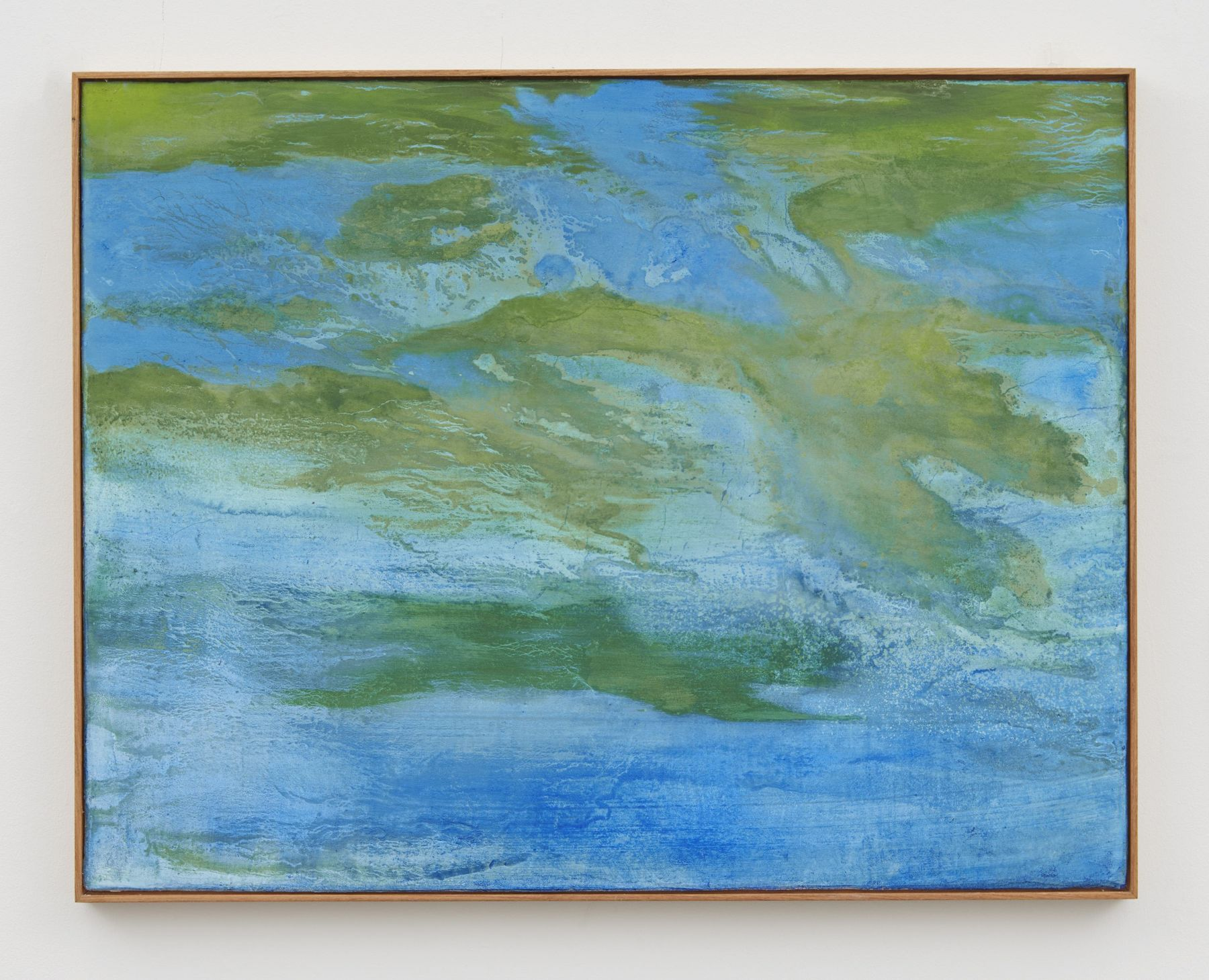 seascape with cianobacteria, 2017