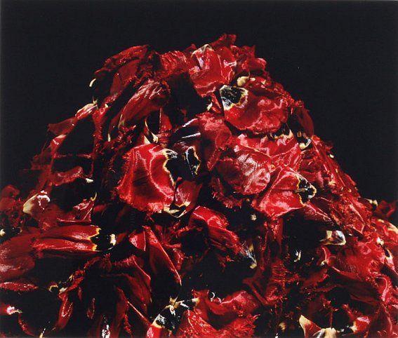 Yukio Nakagawa, The Magic Mountain, 1989-91