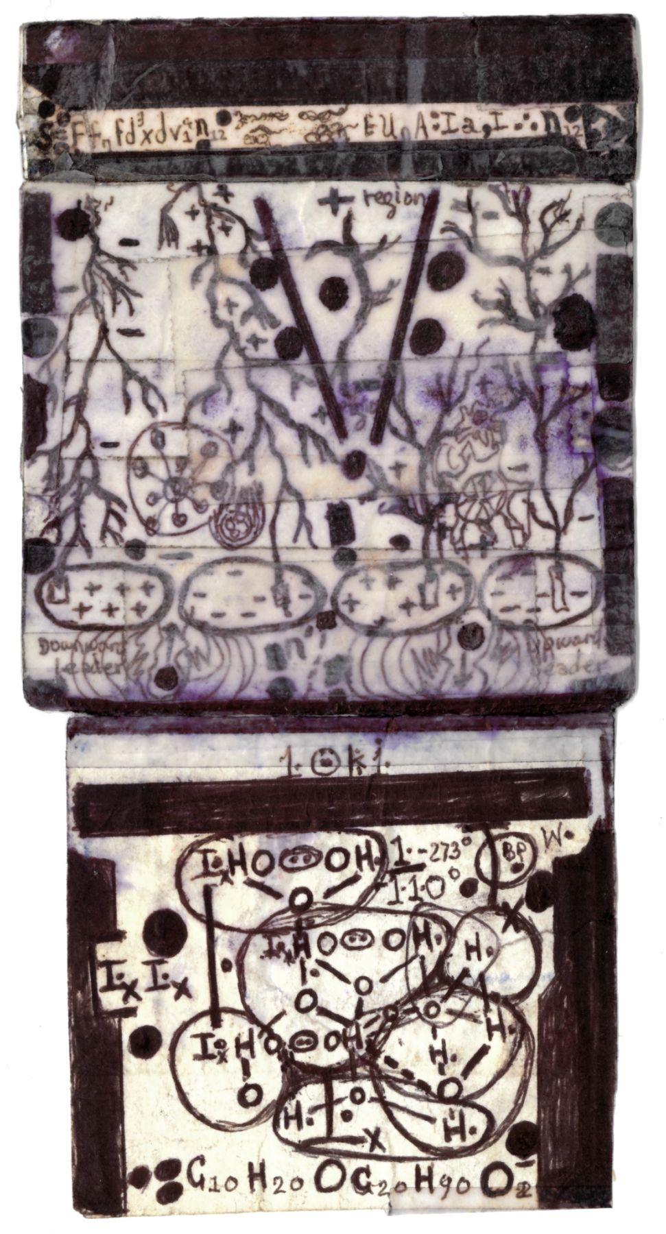 Mooselene,c. 2011, Ballpoint pen on paper with Scotch tape