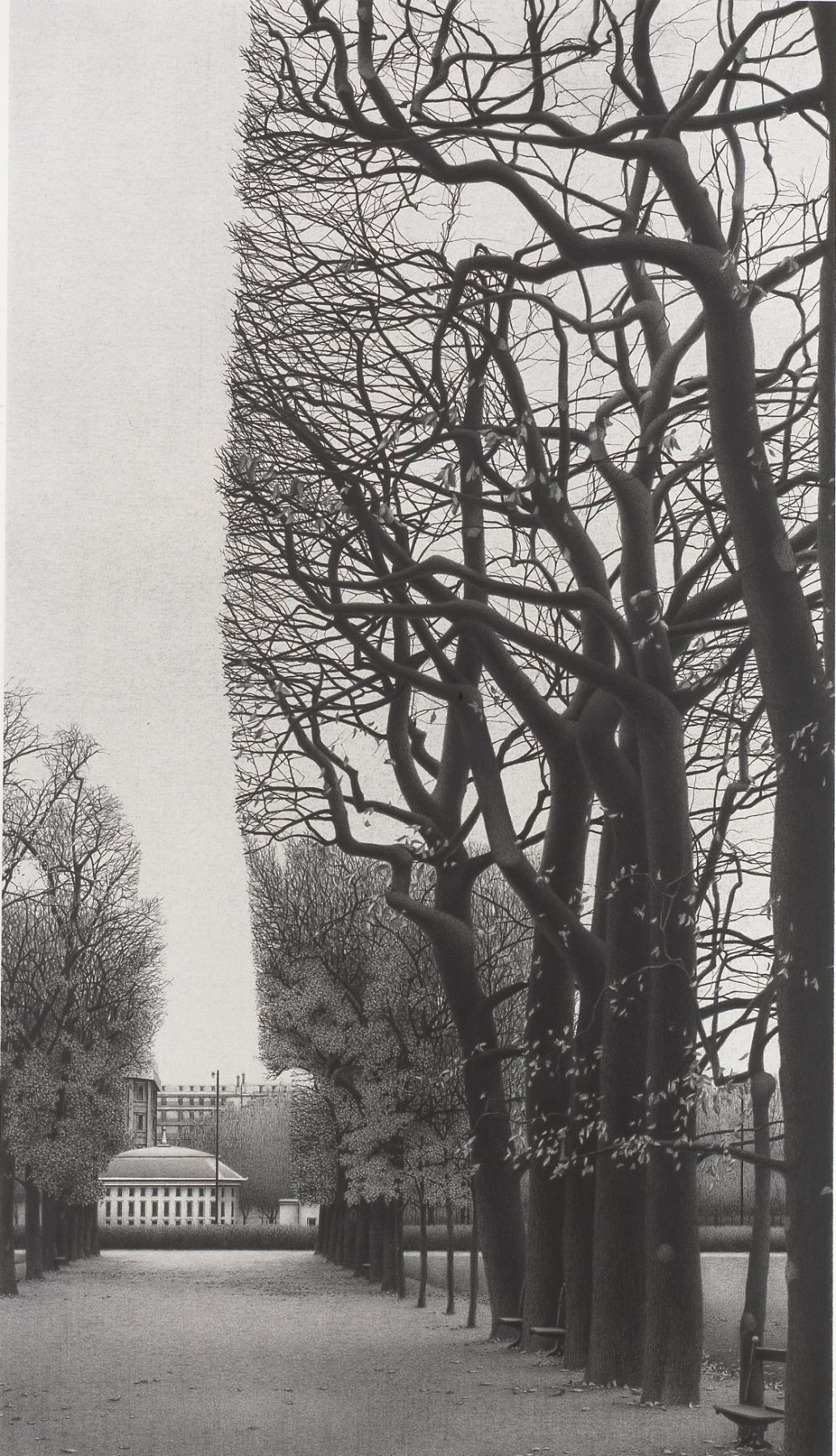 Anthony Mitri 6 Benches, Paris, 2004, charcoal on paper, 30 x 22 1/2 inches, Private Collection