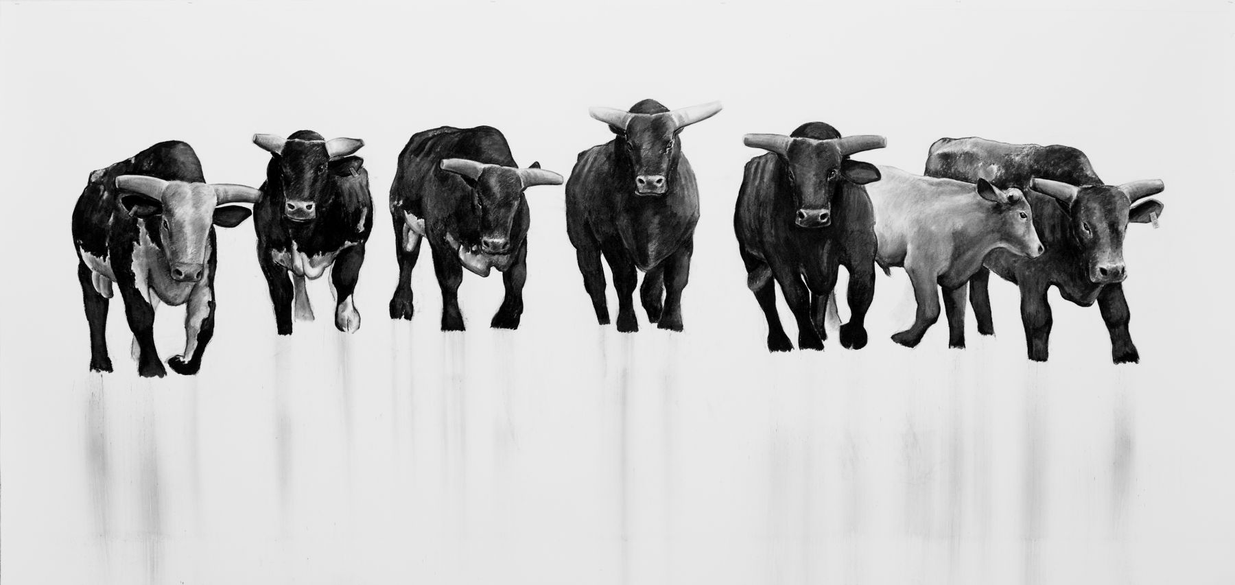 William Beckman, The Bull Series, #9 (SOLD), 2011-12, charcoal on paper, 59 x 123 inches
