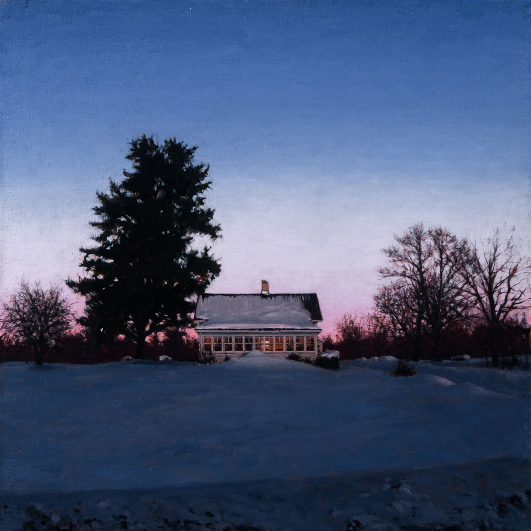 Linden Frederick, White Pine (SOLD), 2008, oil on panel, 12 1/4 x 12 1/4 inches