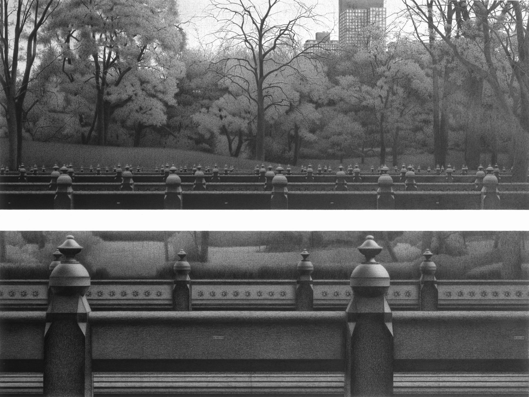 Anthony Mitri 97 Benches (CL 117- CL 214) Central Park, New York, 2005 charcoal on paper 22 x 30 inches, Private Collection