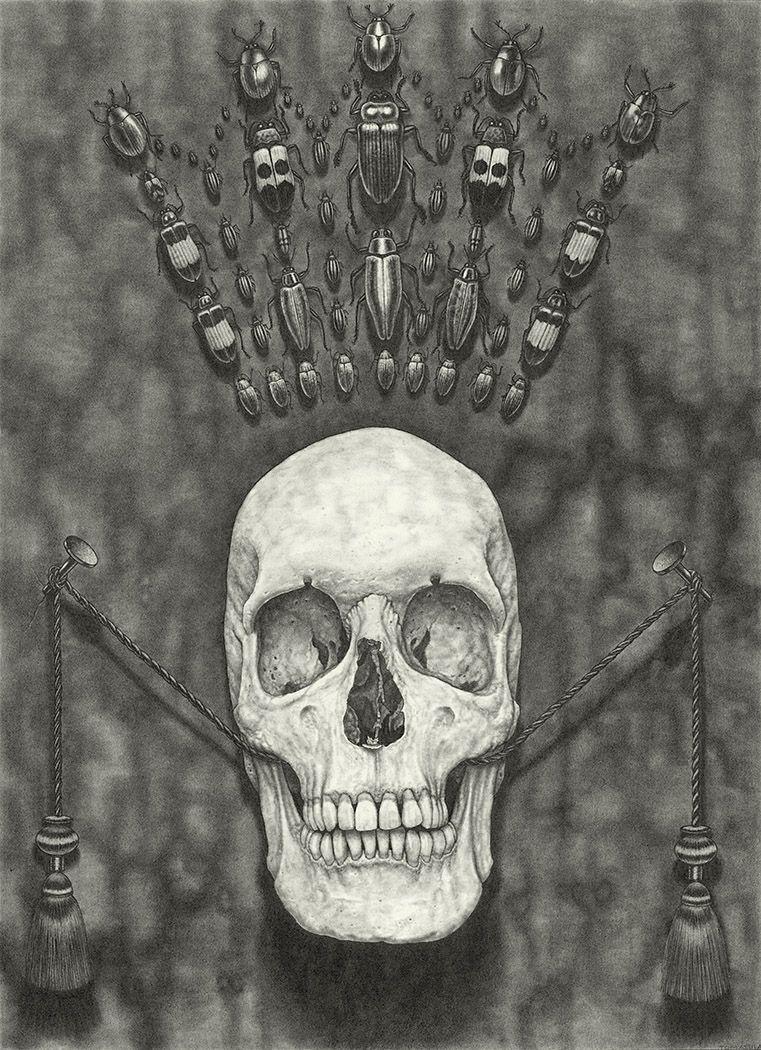 maria tomasula, Kingdom, 2018, graphite on paper, 22 x 16 inches