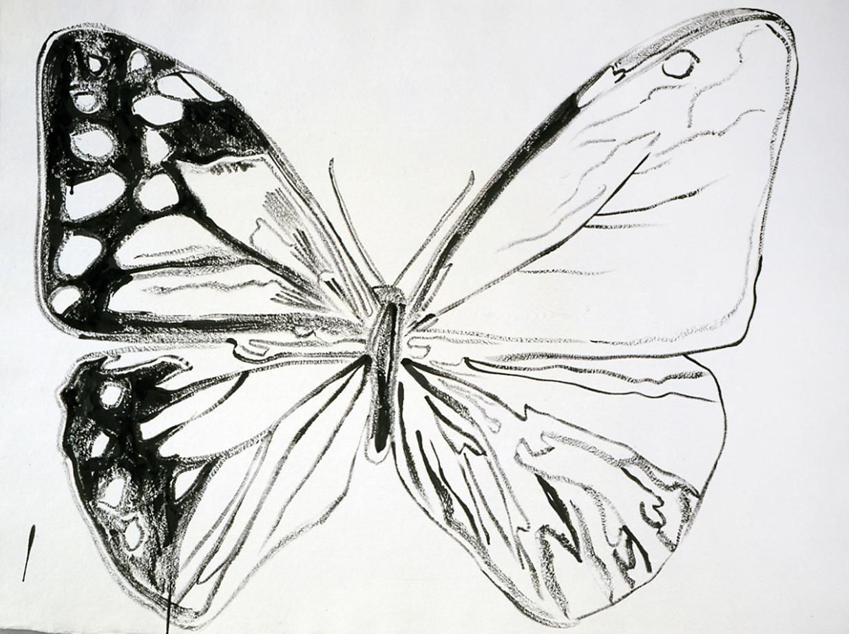 Vanishing Animals: Butterfly, 1986
