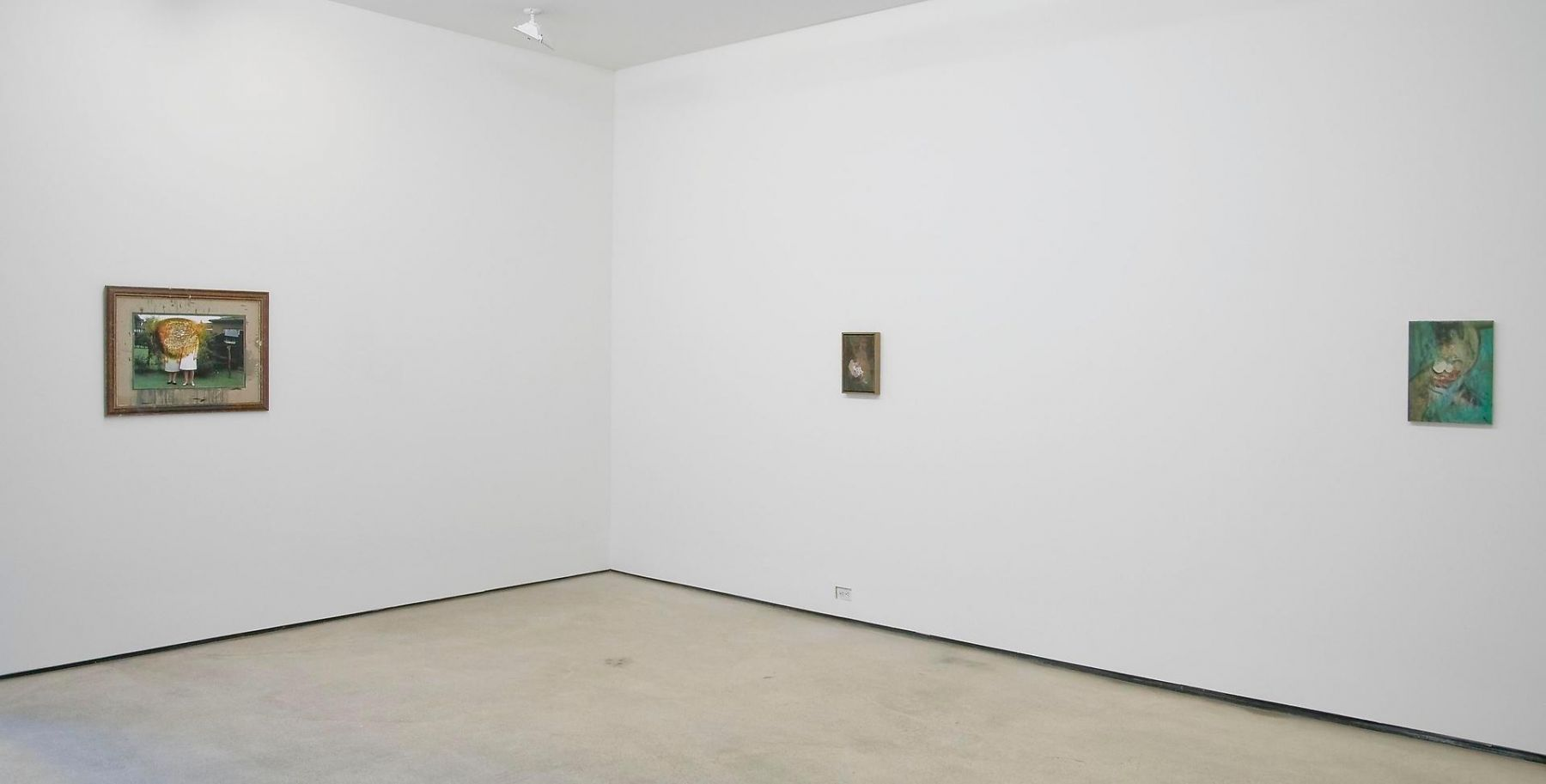 Installation view, Ross Chisholm, Garden of Forking Paths, Marc Jancou, New York, September 8 - October 22, 2011