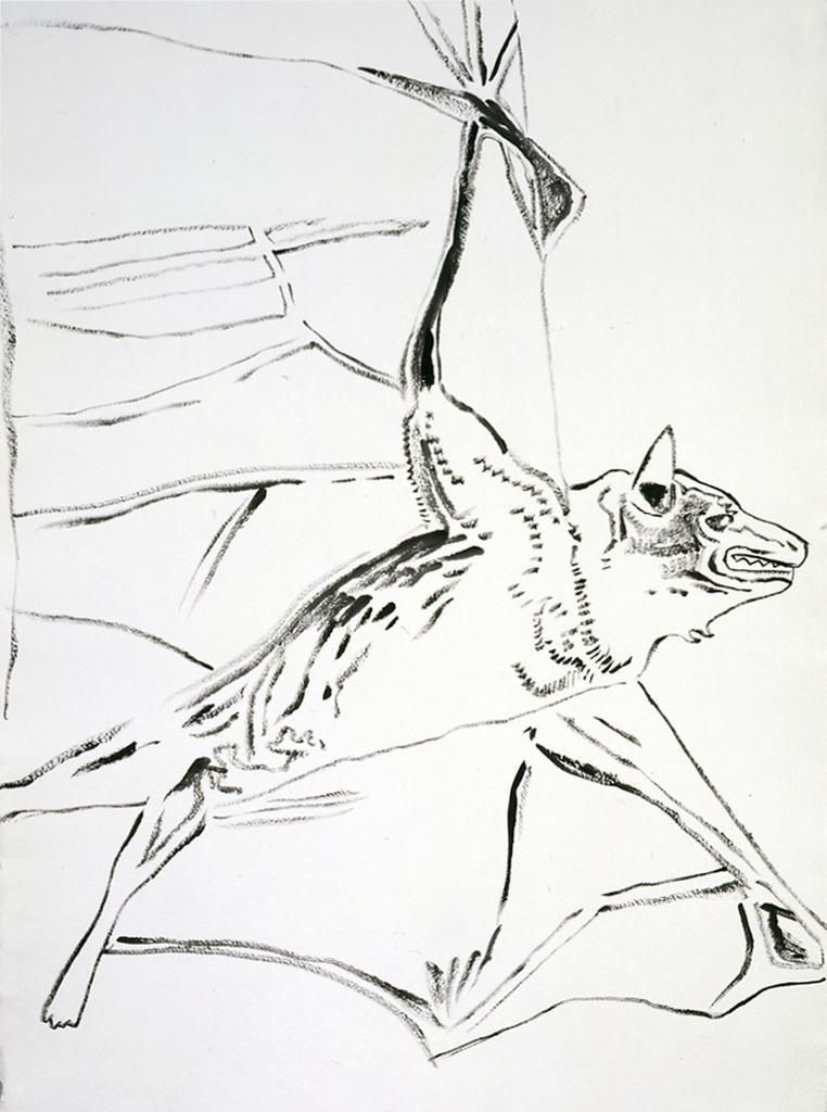 Vanishing Animals: Bat, 1986