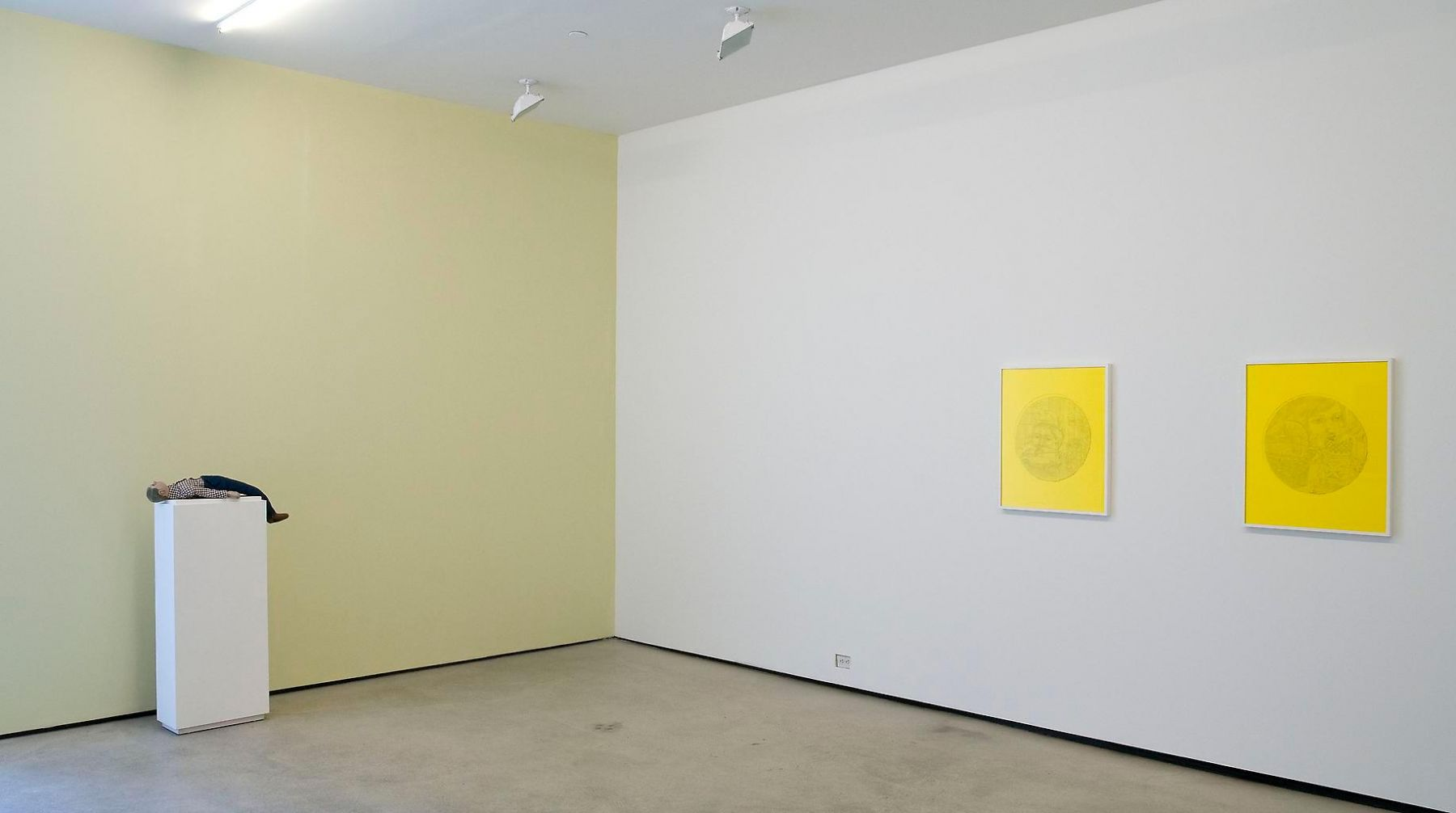 Installation view, Michael Cline, Arcadia, Marc Jancou, New York, March 18 - April 23, 2011