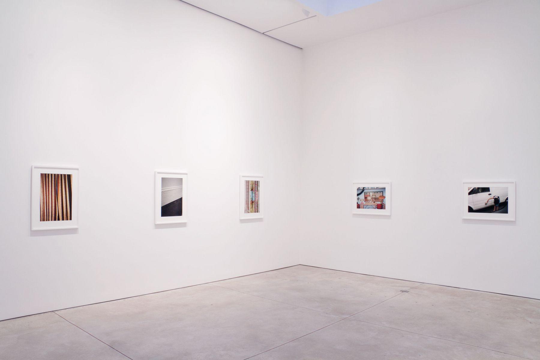 William Eggleston - Installation View
