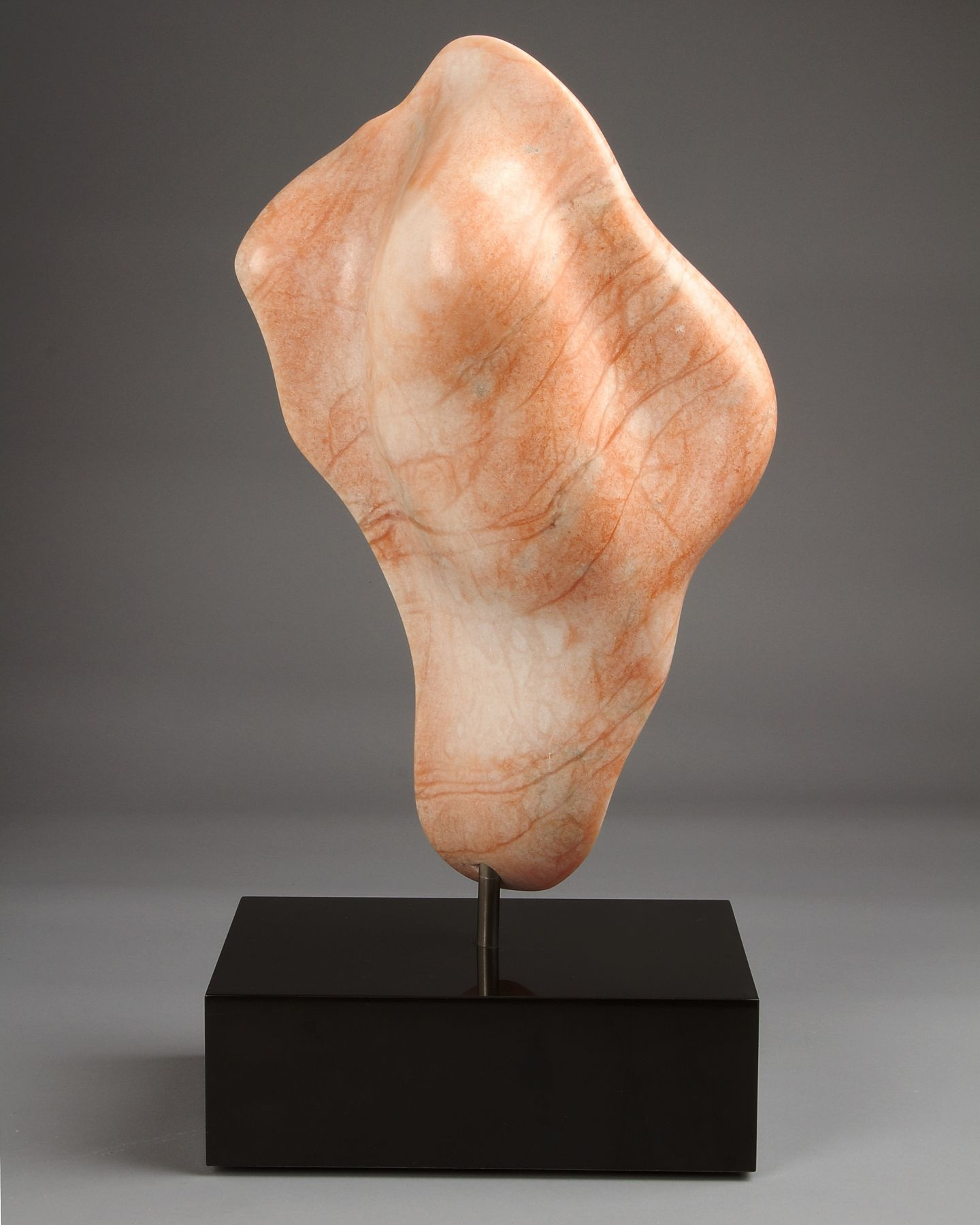 Charlie Kaplan, Embryo, 1993, rear view