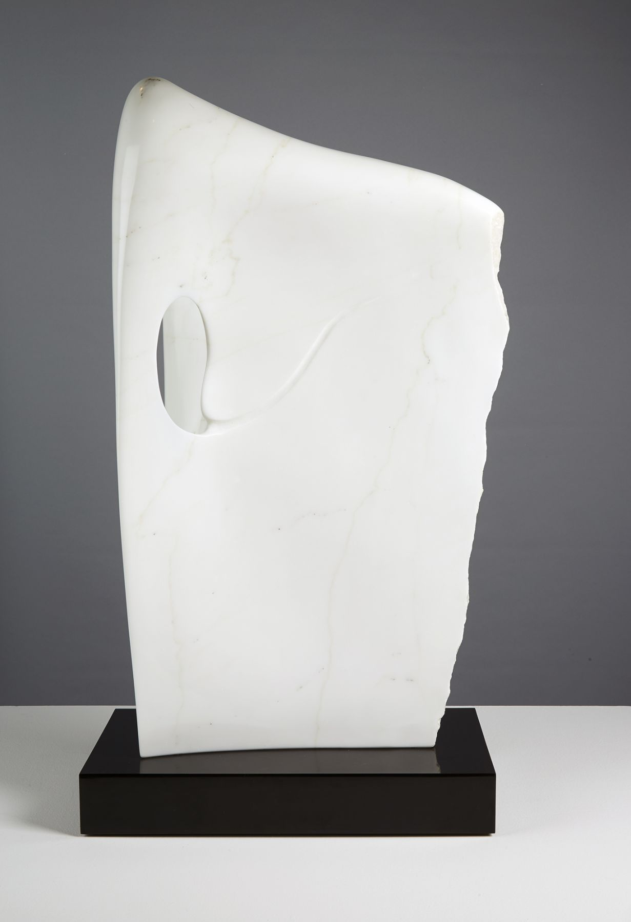 Charlie Kaplan, Intertwined, 2012, front view