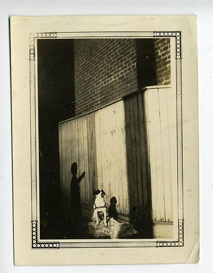 Dog with Shadow, 1930s, 3 x 3 14/16 in.