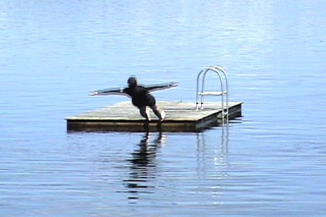 MARY COBLE Untitled 2 (video still from Fall) 2009-10, 5 x 7 inches