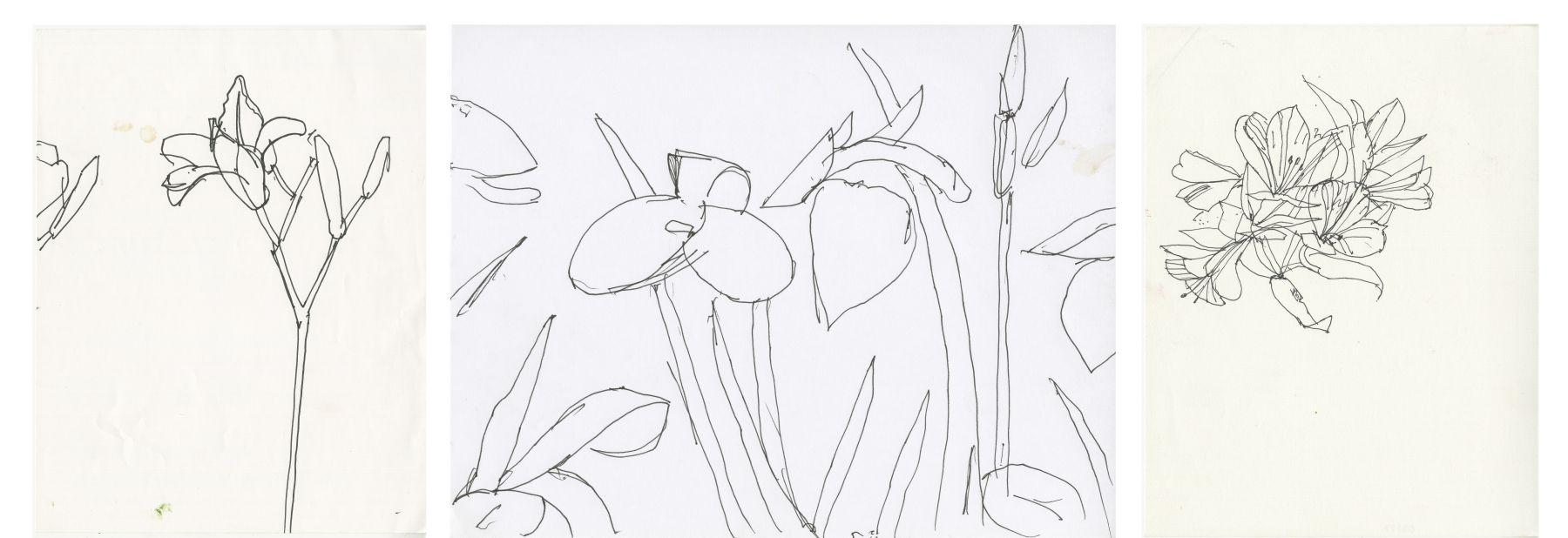 AK Sketches