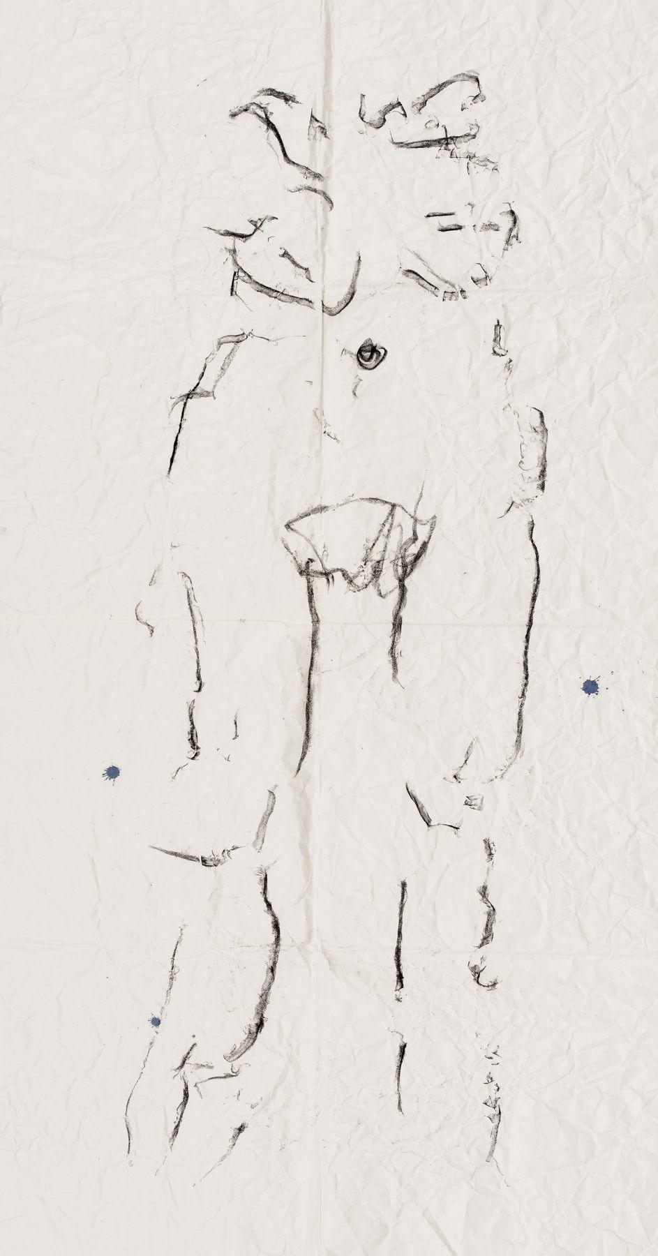 Body Drawing