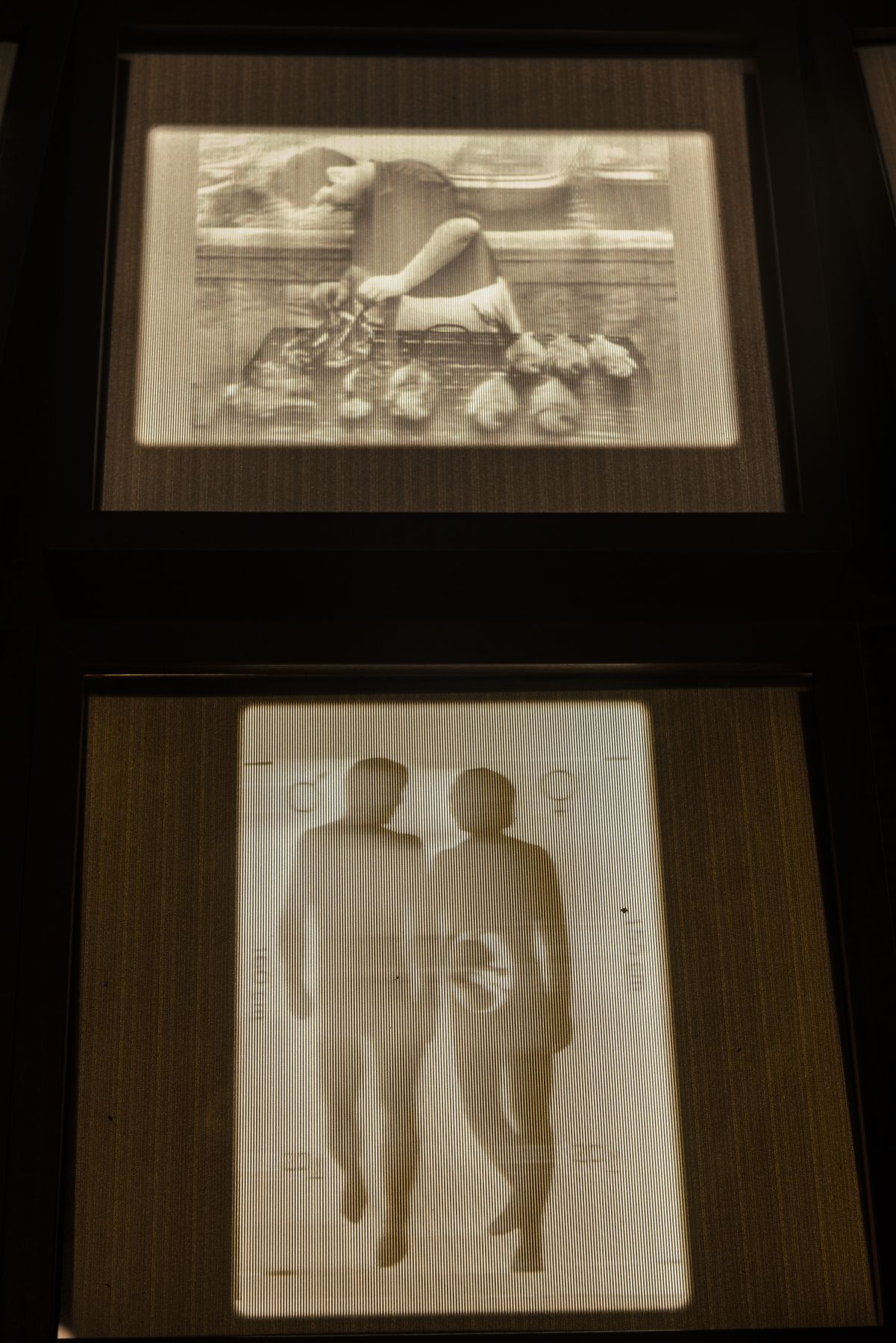 Close up photo of 3D transparencies of images from the Golden Record. On top, there is san image of a man barbecuing, and on the bottom there is a graphic with a man and woman and her reproductive organs.