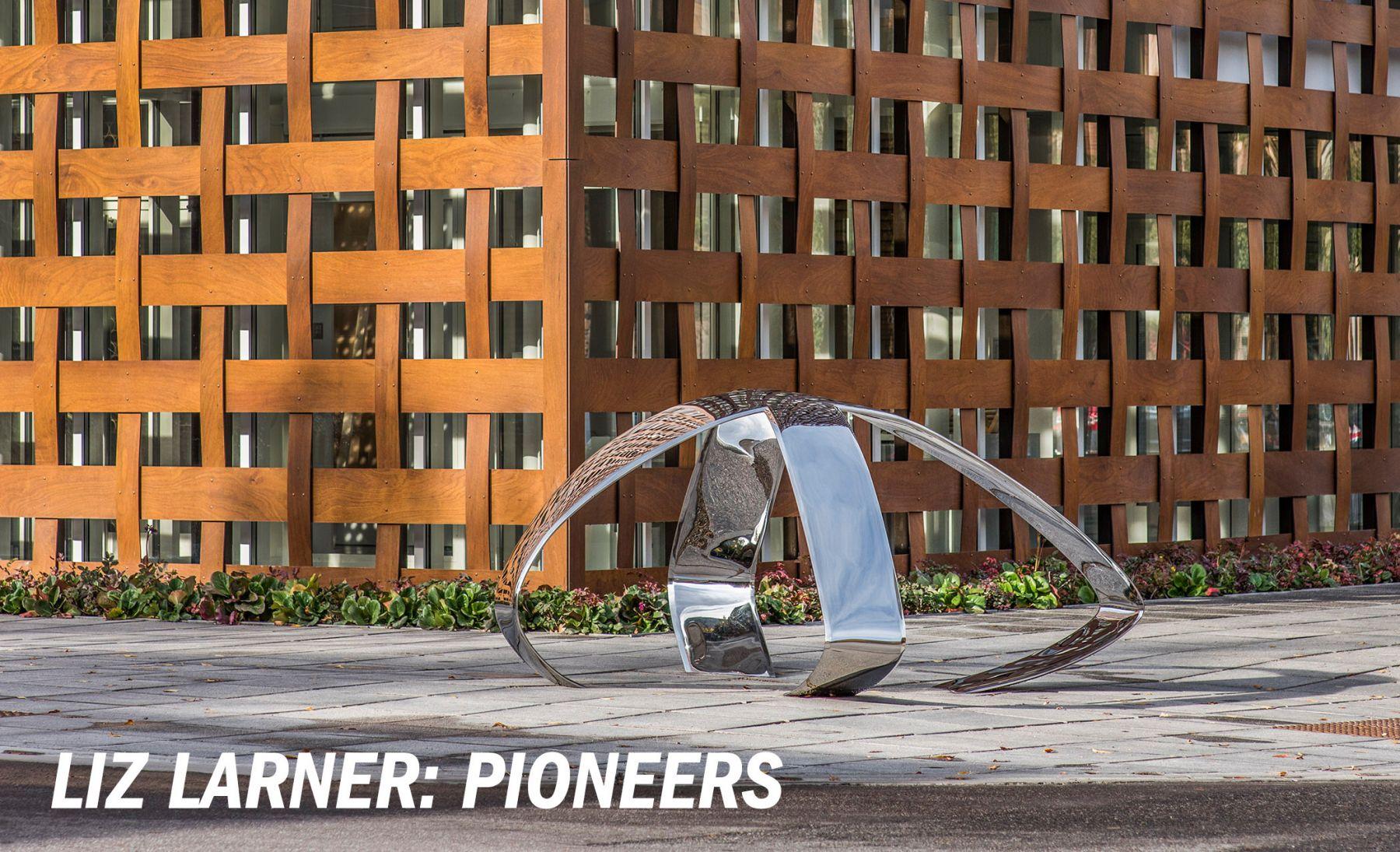 Liz Larner: Pioneers