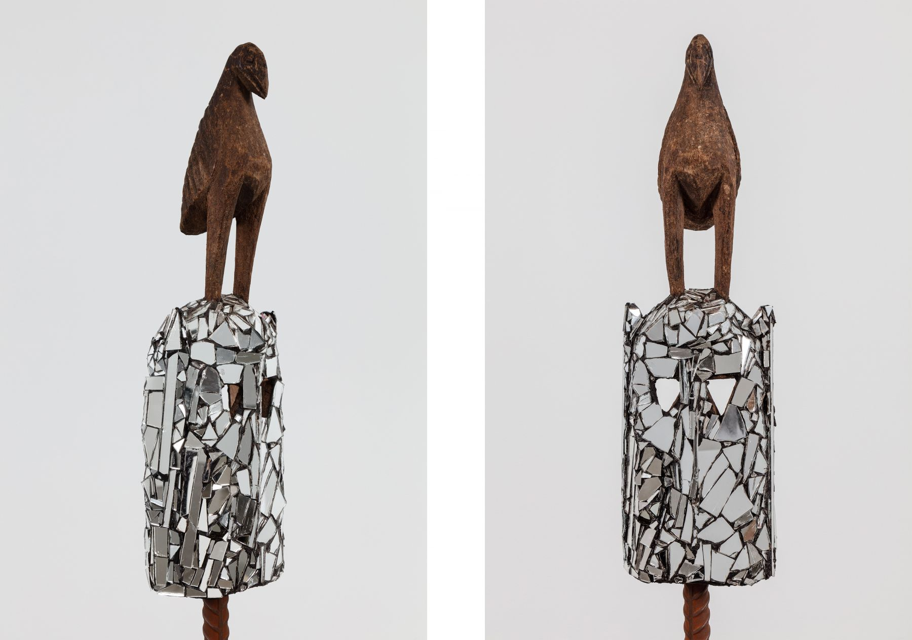 Attia details (bird)