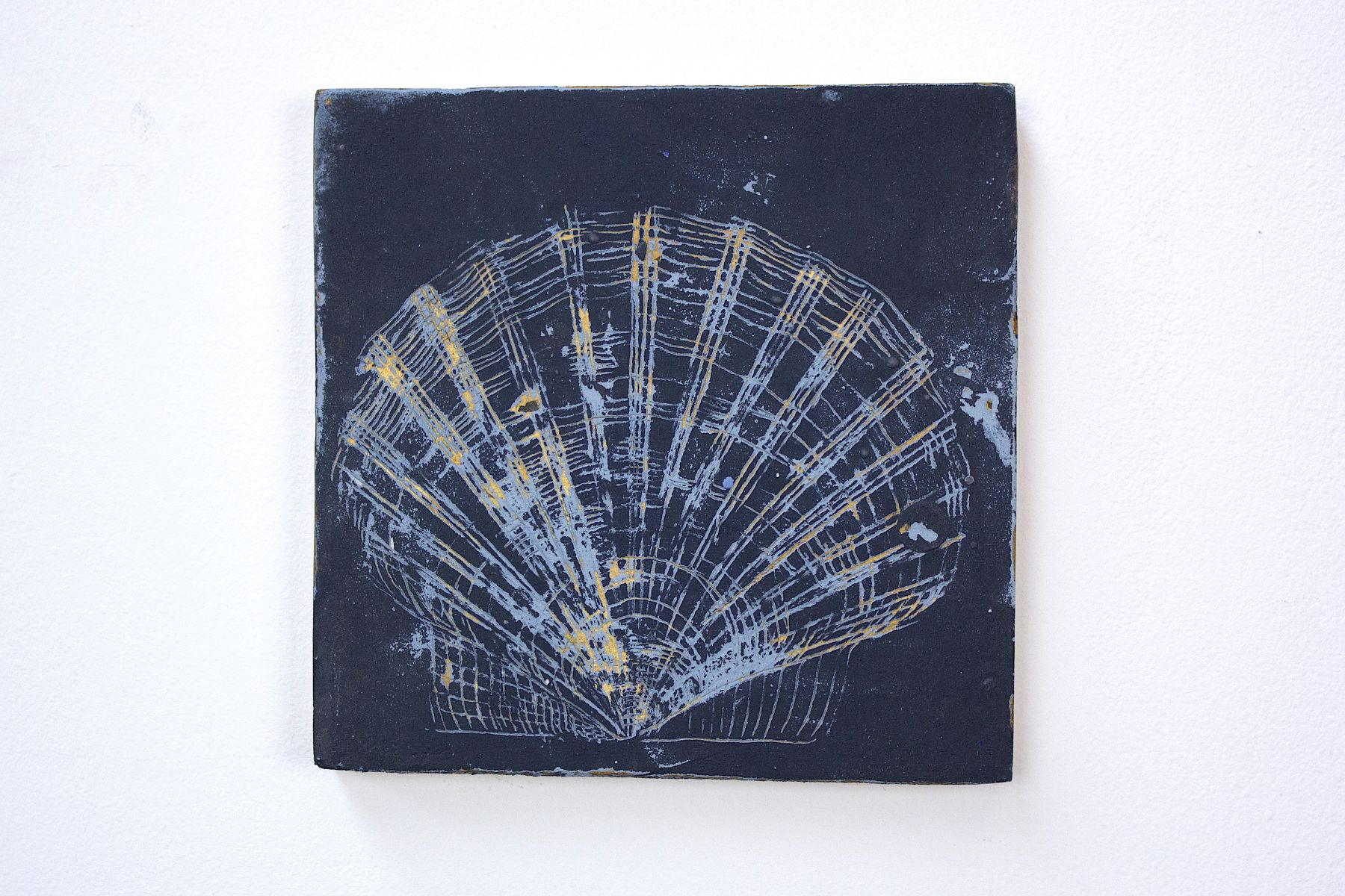 shell medium