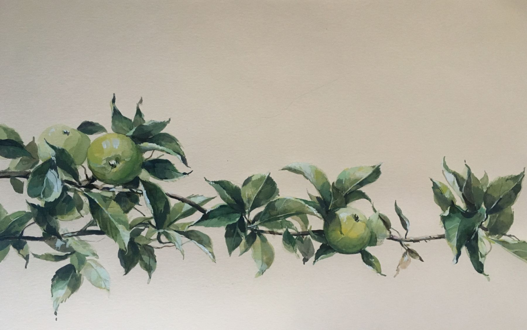 "Apple Branch  15"" x 22""  Watercolor On Buff Paper"