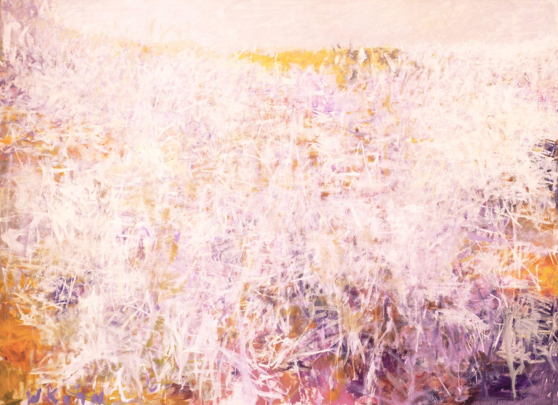 "Namibia Chaos, 52""H X 72""W, Oil on canvas Wolf Kahn"