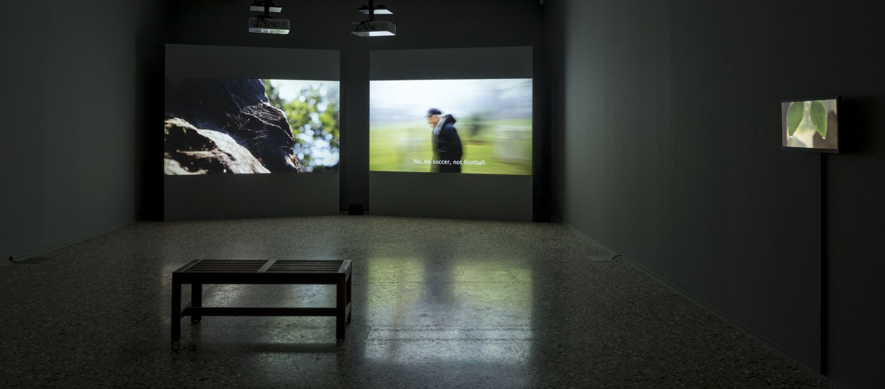 Large Image (installation view 2)