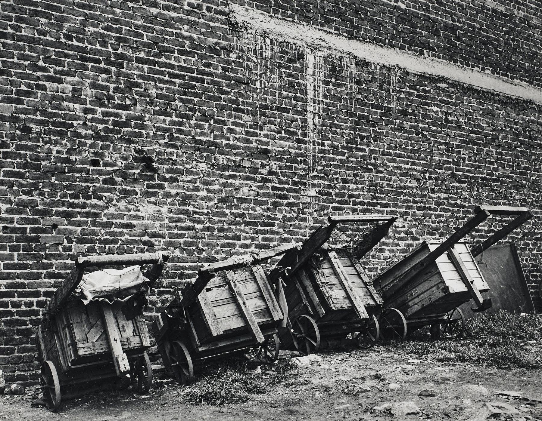 David Goldblatt the carts
