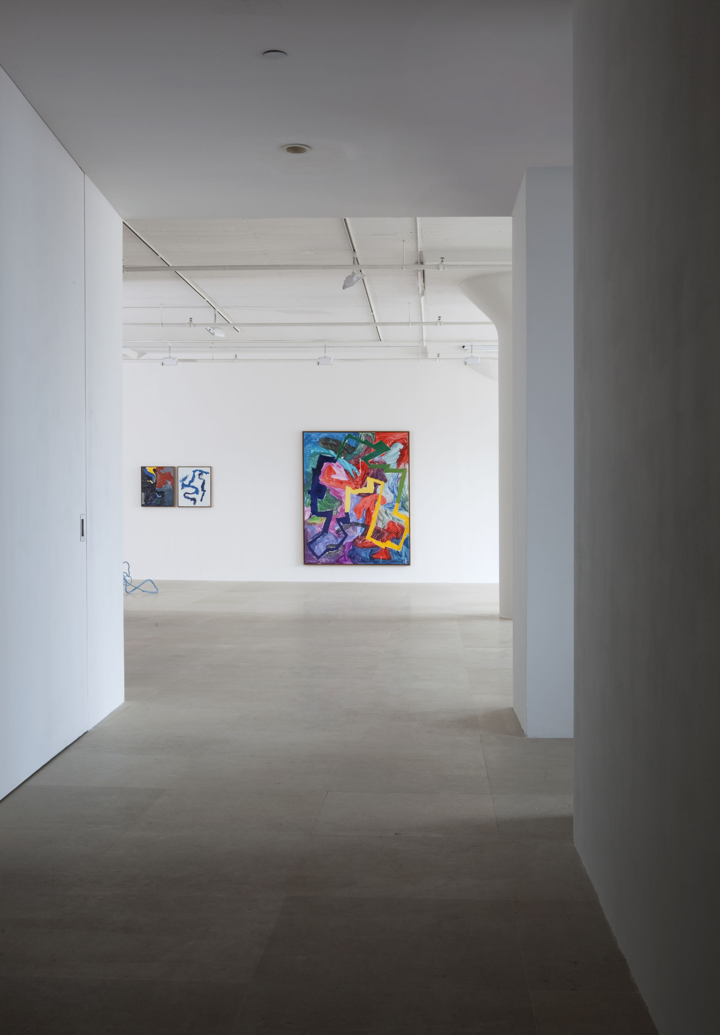 Ida Ekblad, Installation view, Greene Naftali, New York, 2011