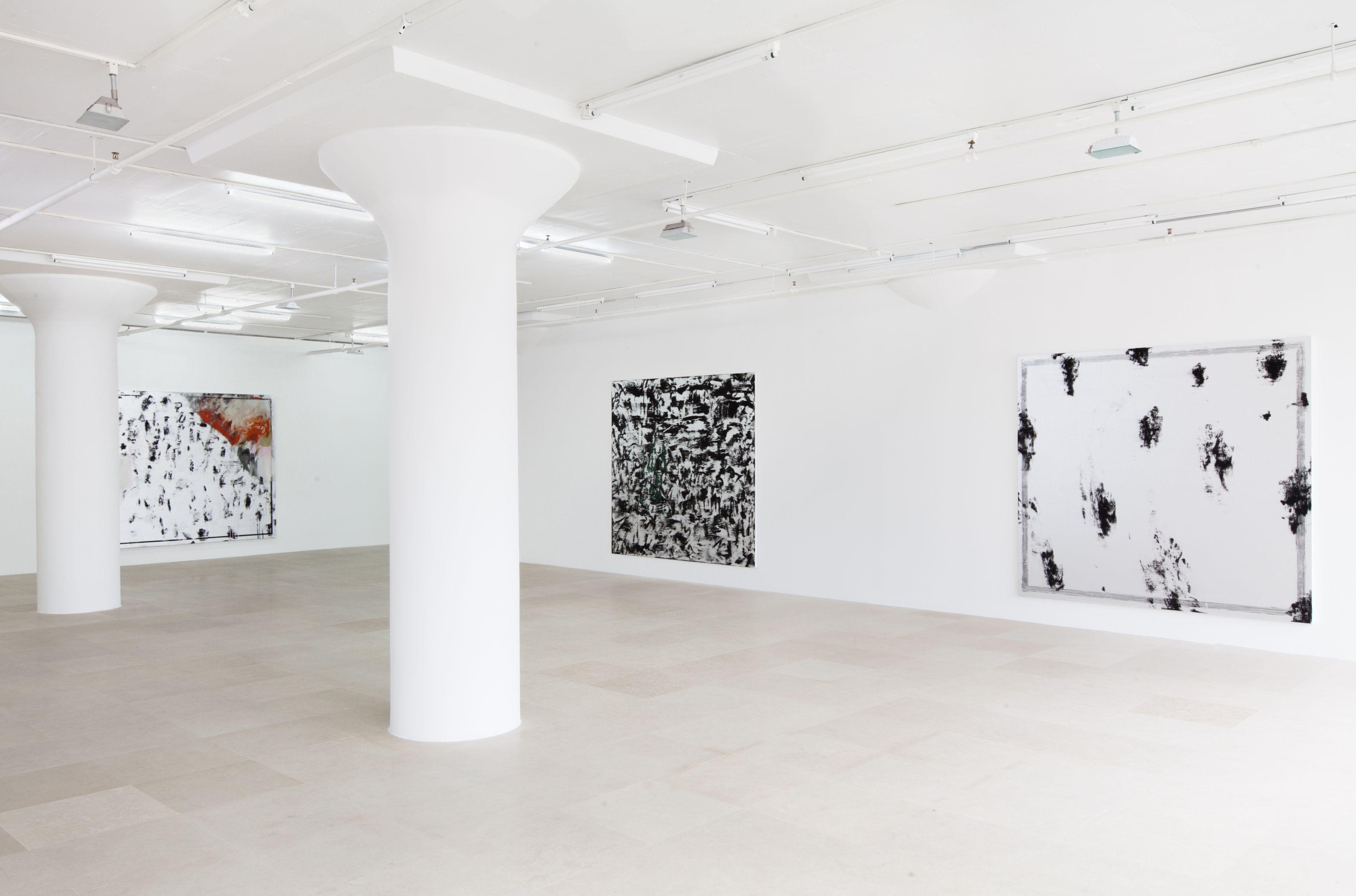 jacqueline humphries Installation view, Greene Naftali, New York, 2012