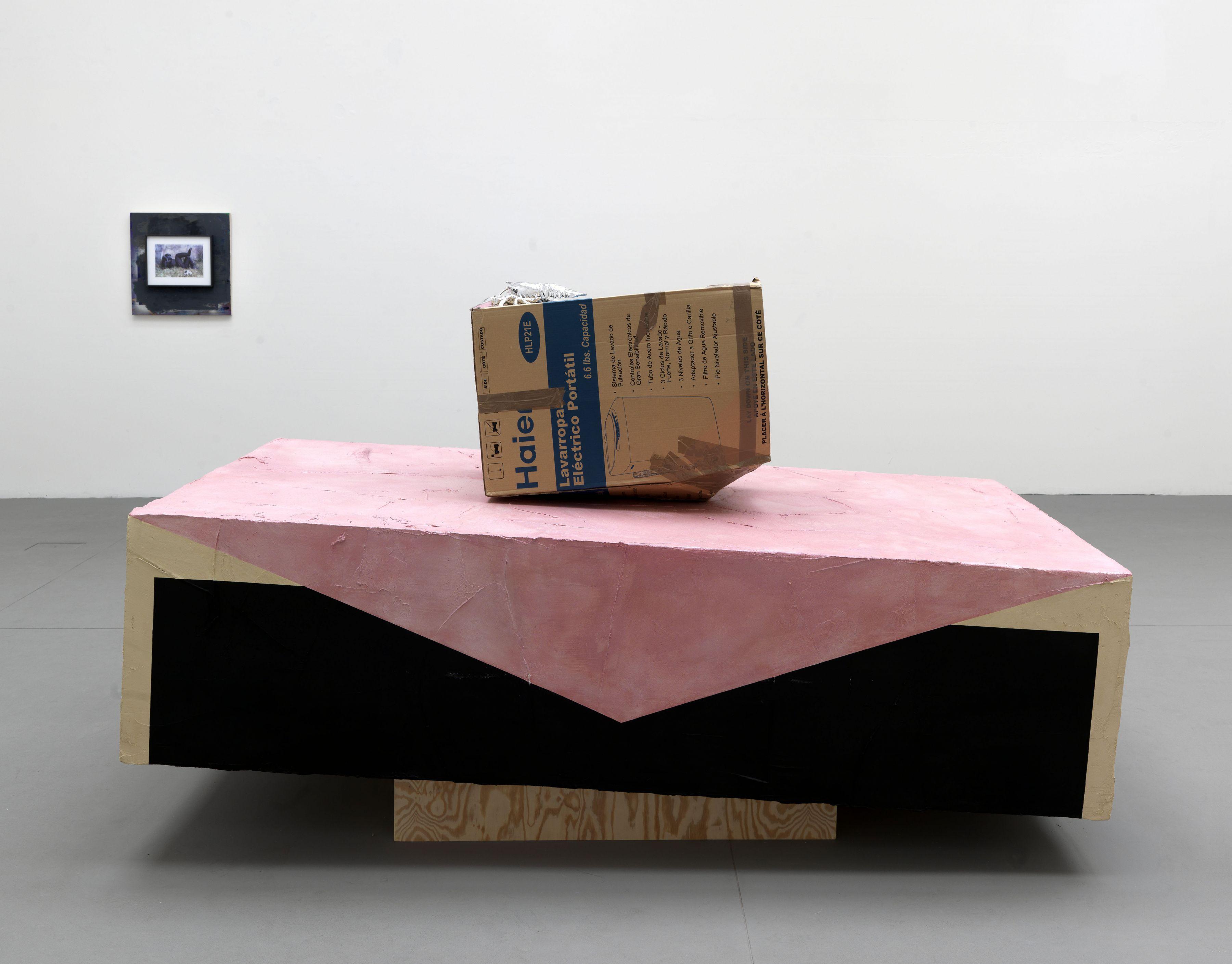 Rachel Harrison Greene Naftali Gallery, New York Venice Biennale, Venice, 2009