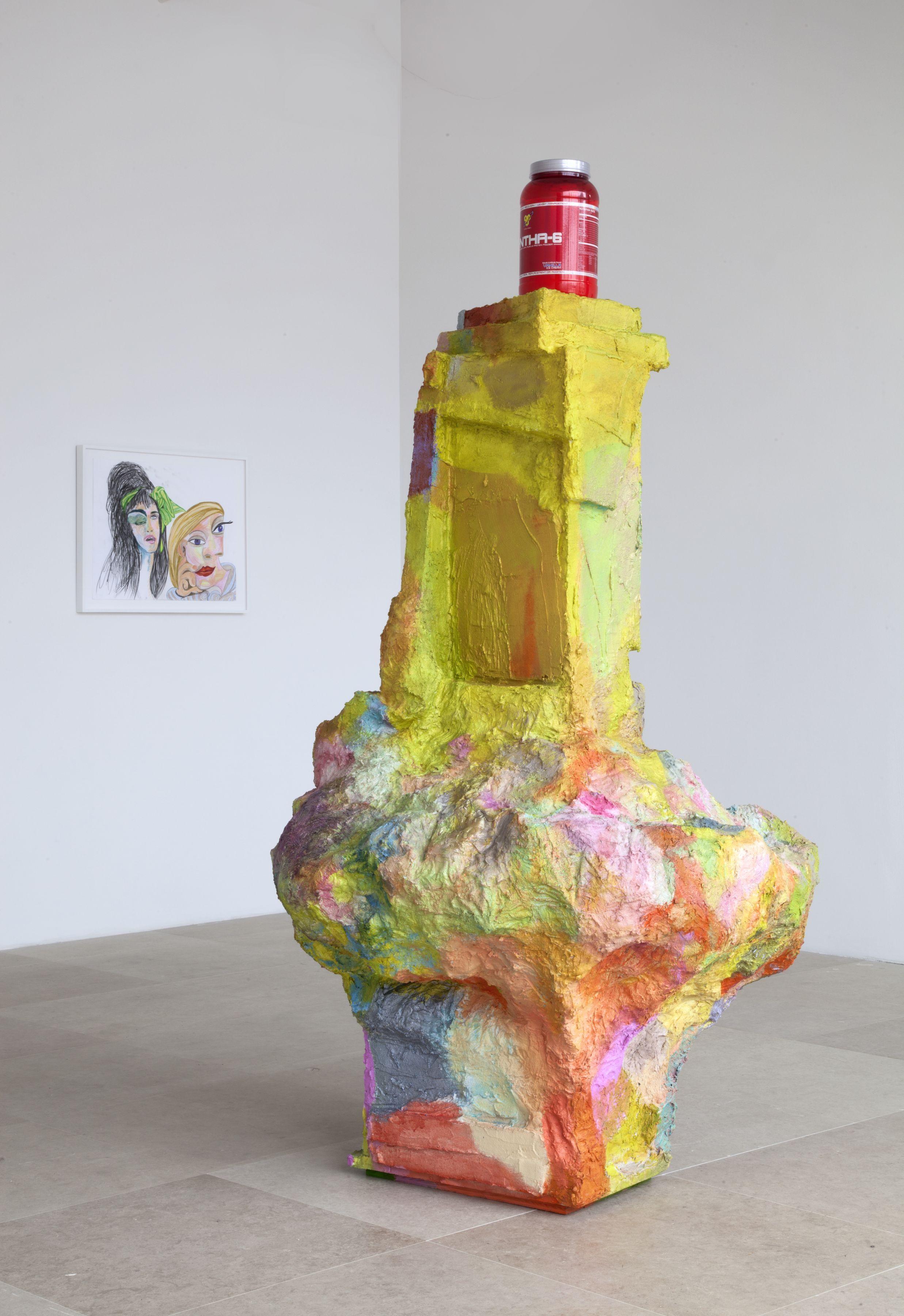 Rachel Harrison Greene Naftali Gallery New York Installation view The Help 2012