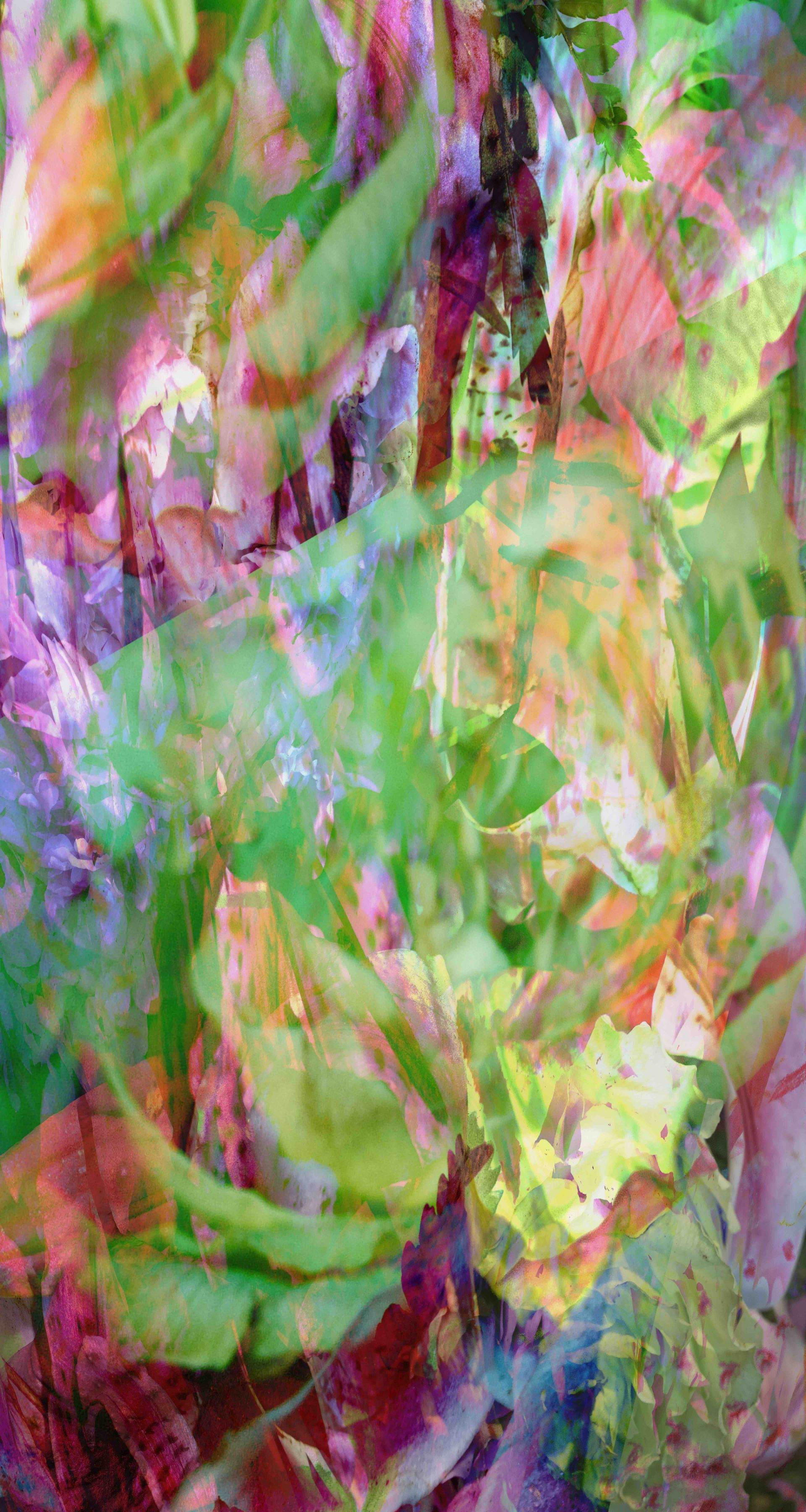 Ecstatic Garden by Fidan Bagirova at Hg Contemporary