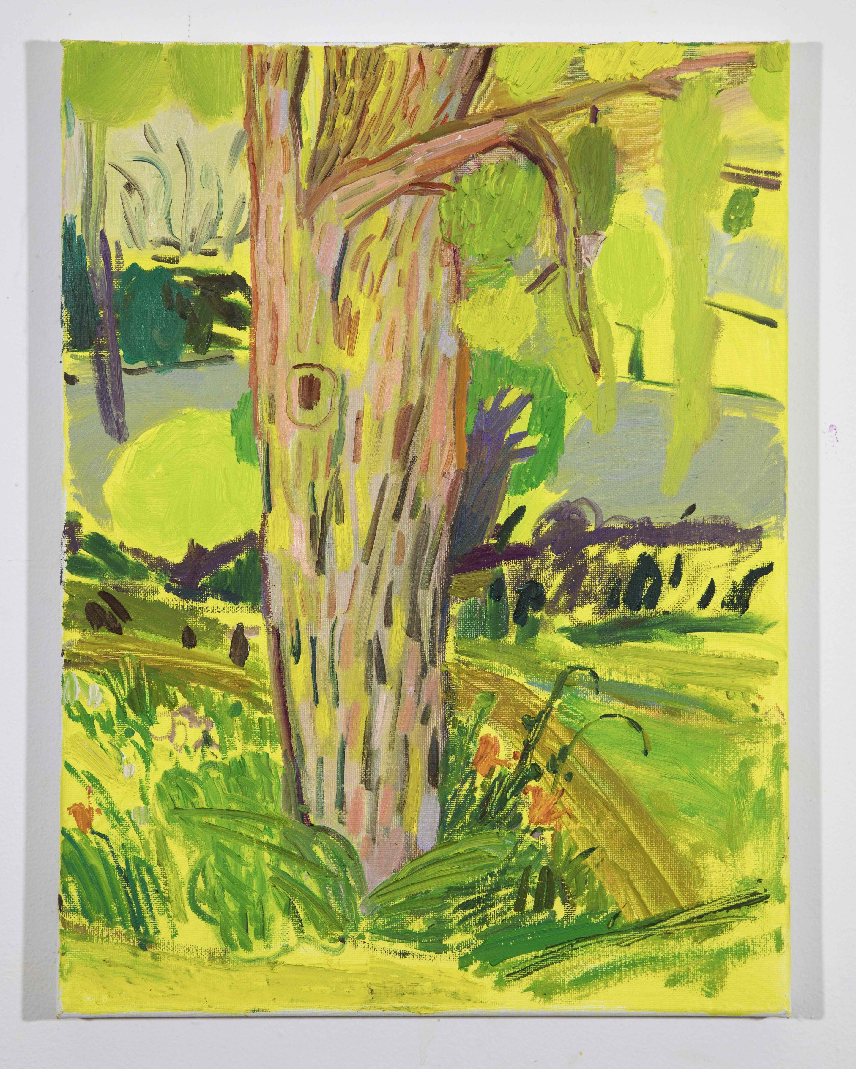 LISA SANDITZ, Landscape Color Study 1, 2019