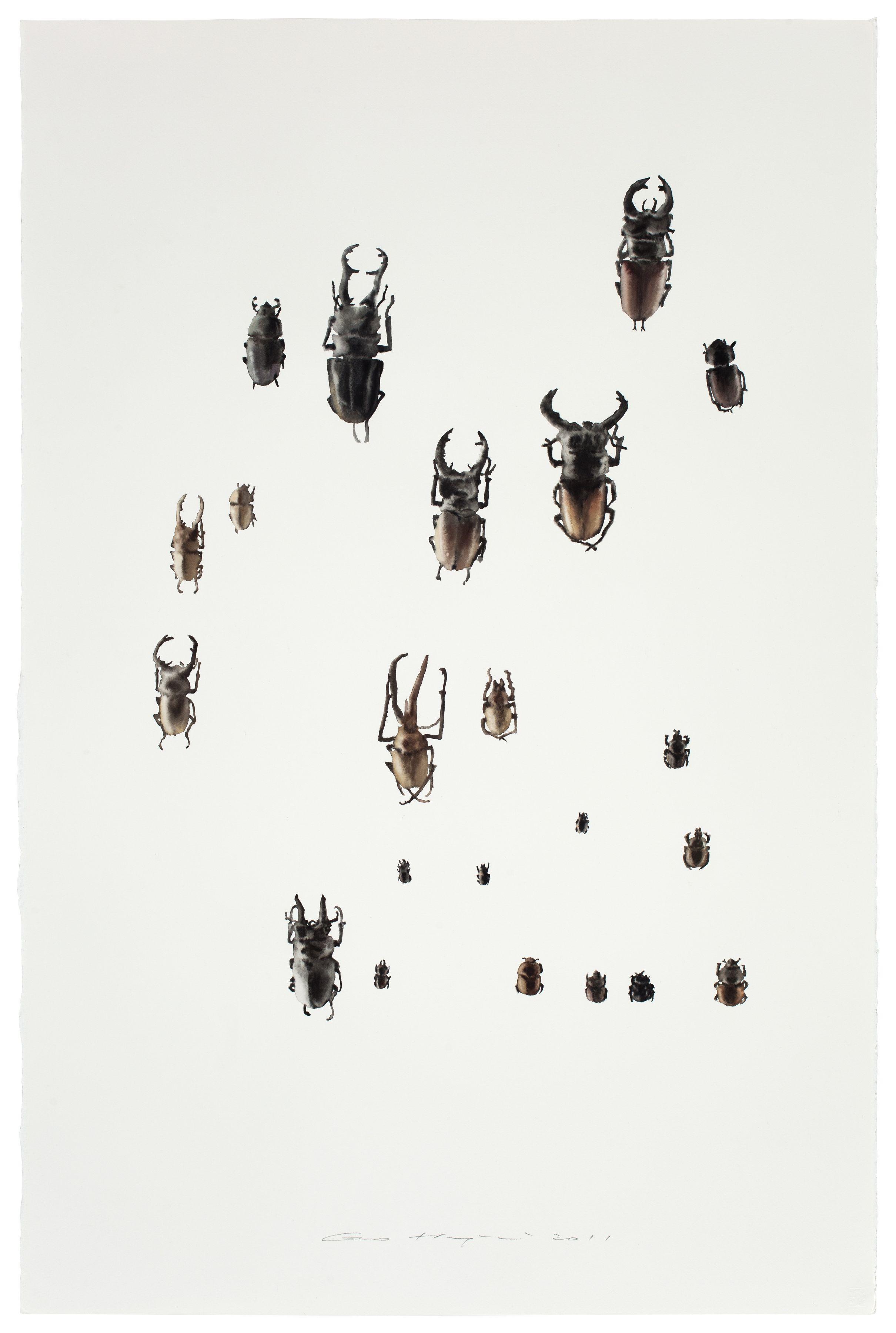Guo Hongwei, Insect No. 3 虫3