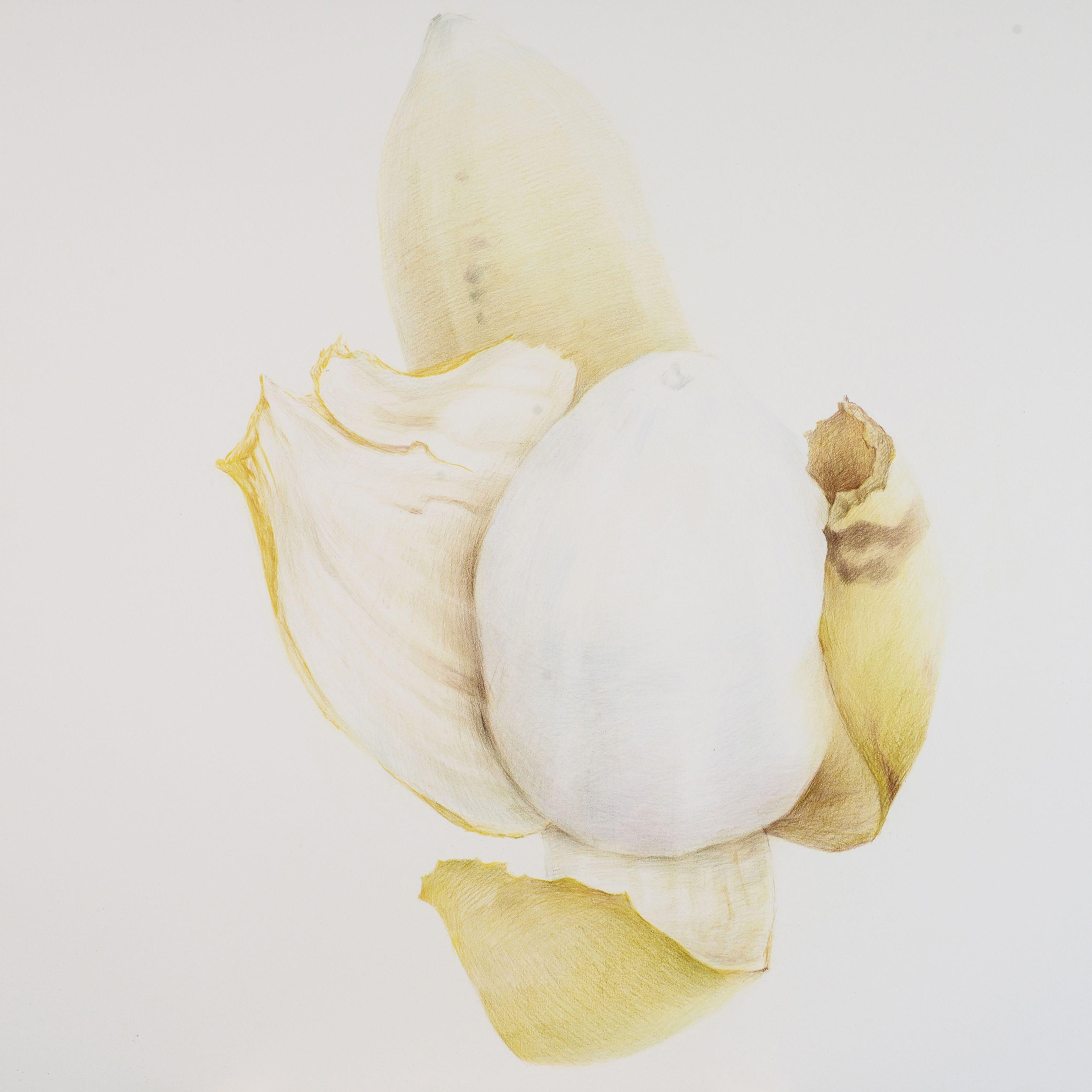 Zhang Dun 张盾, Banana 2 香蕉 2