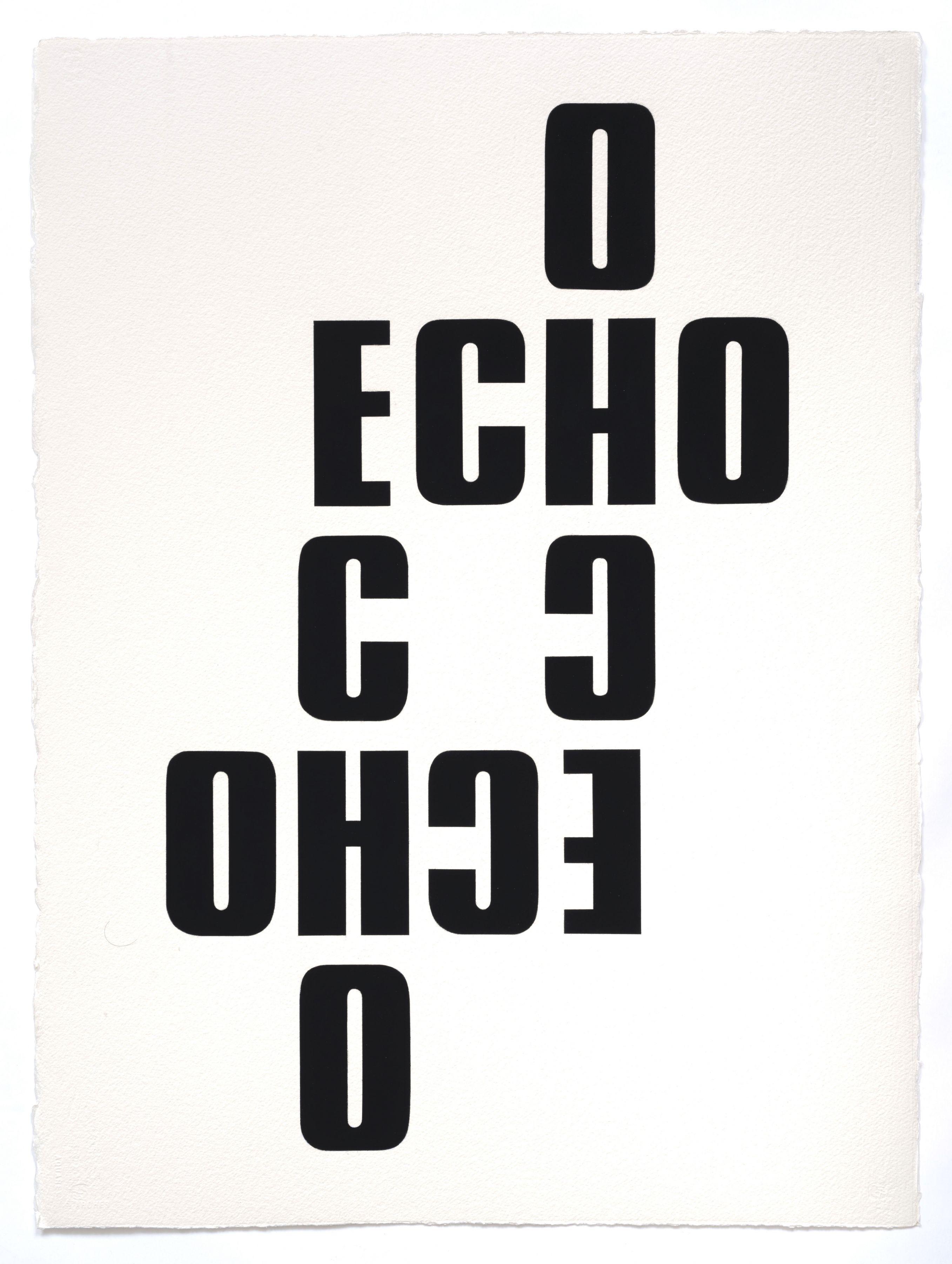 Kay Rosen, Echos, 2013