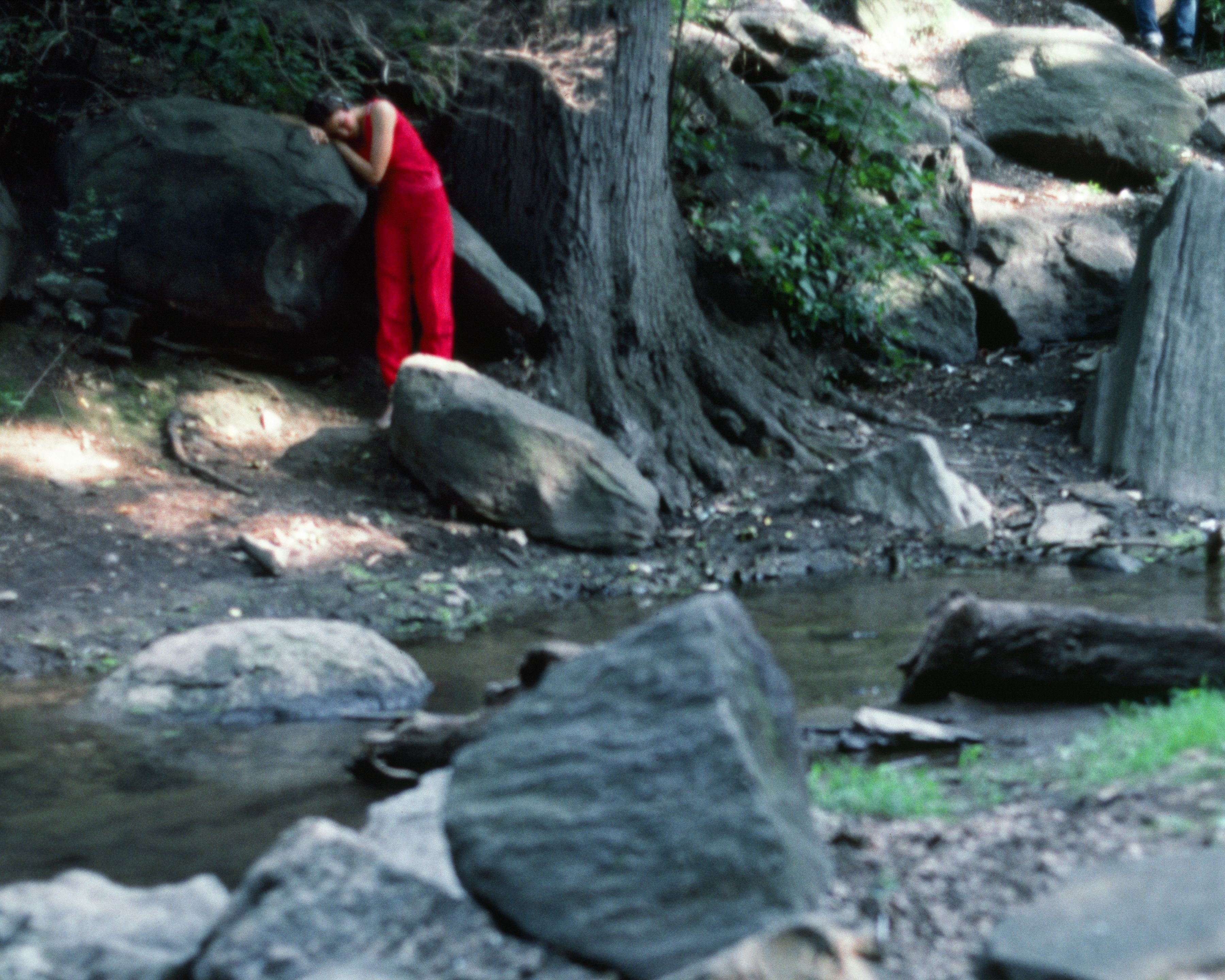 Rivers, First Draft: The Teenager in Magenta stands depressed on the bank of the stream, 1982/2015, Digital C-print from Kodachrome 35mm slides in 48 parts, 16h x 20w in (40.64h x 50.80w cm)