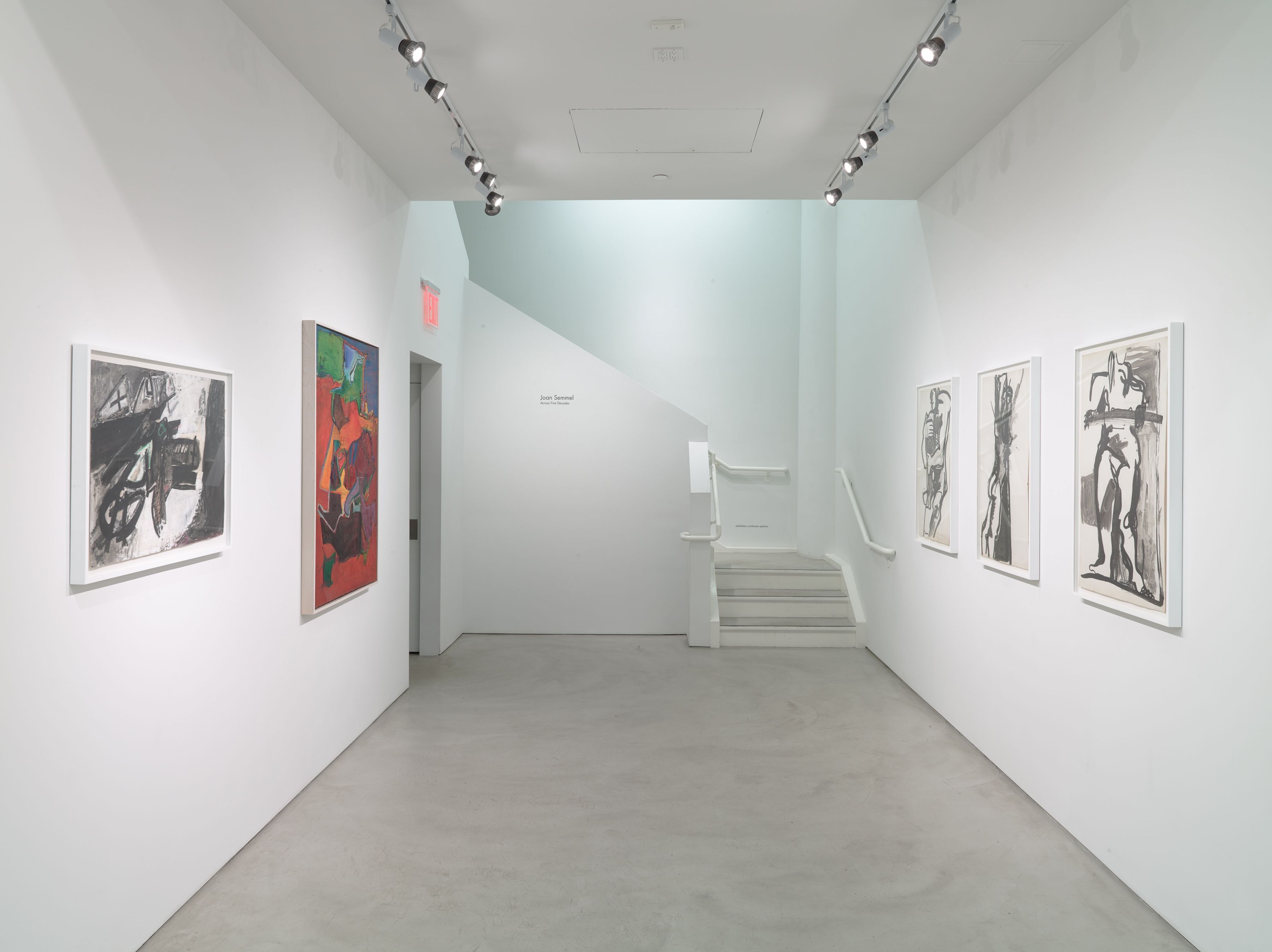 Joan Semmel: Across Five Decades, Installation View, Alexander Gray Associates, 2015