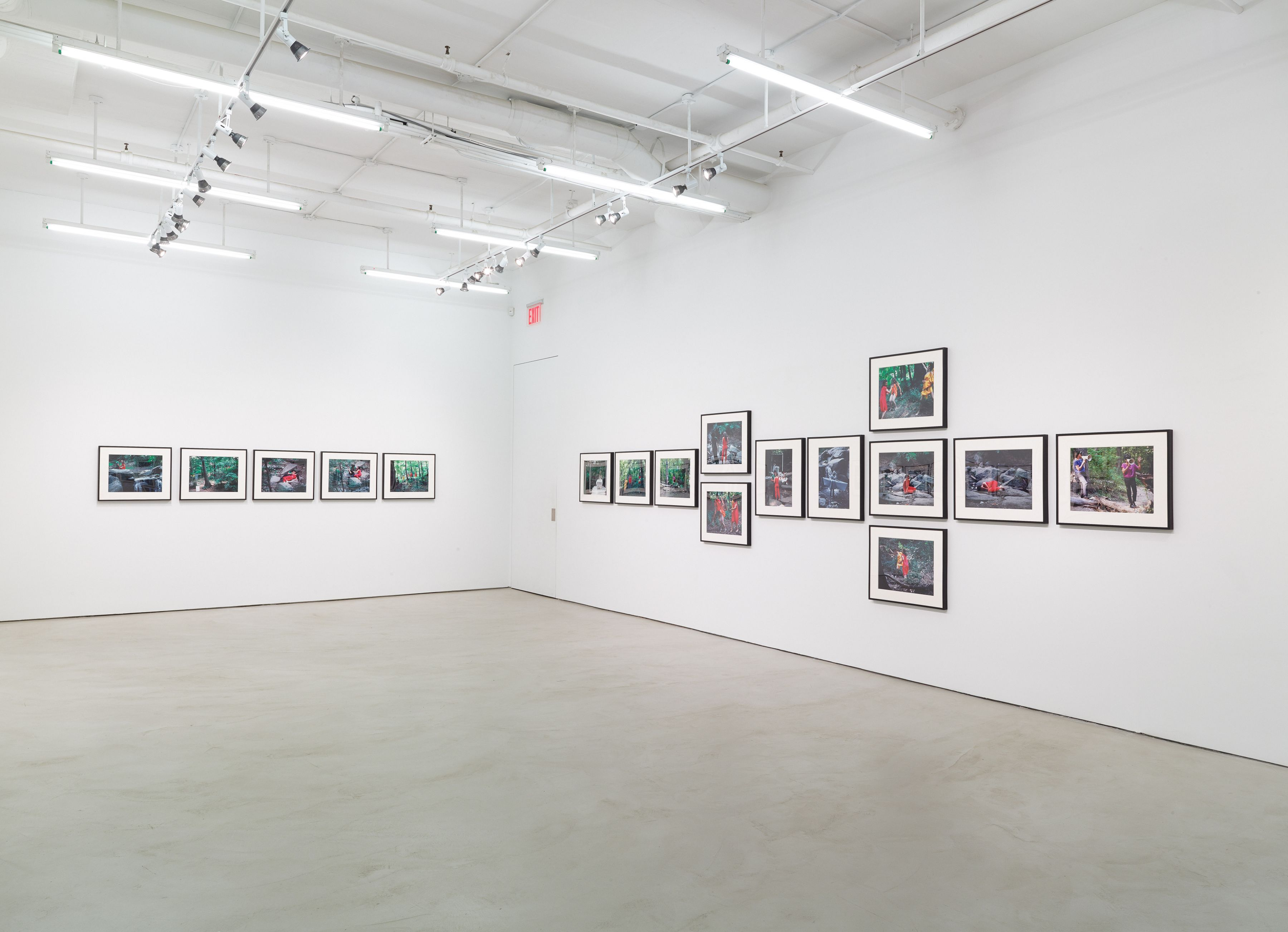 Lorraine O'Grady, installation view, Alexander Gray Associates, 2015