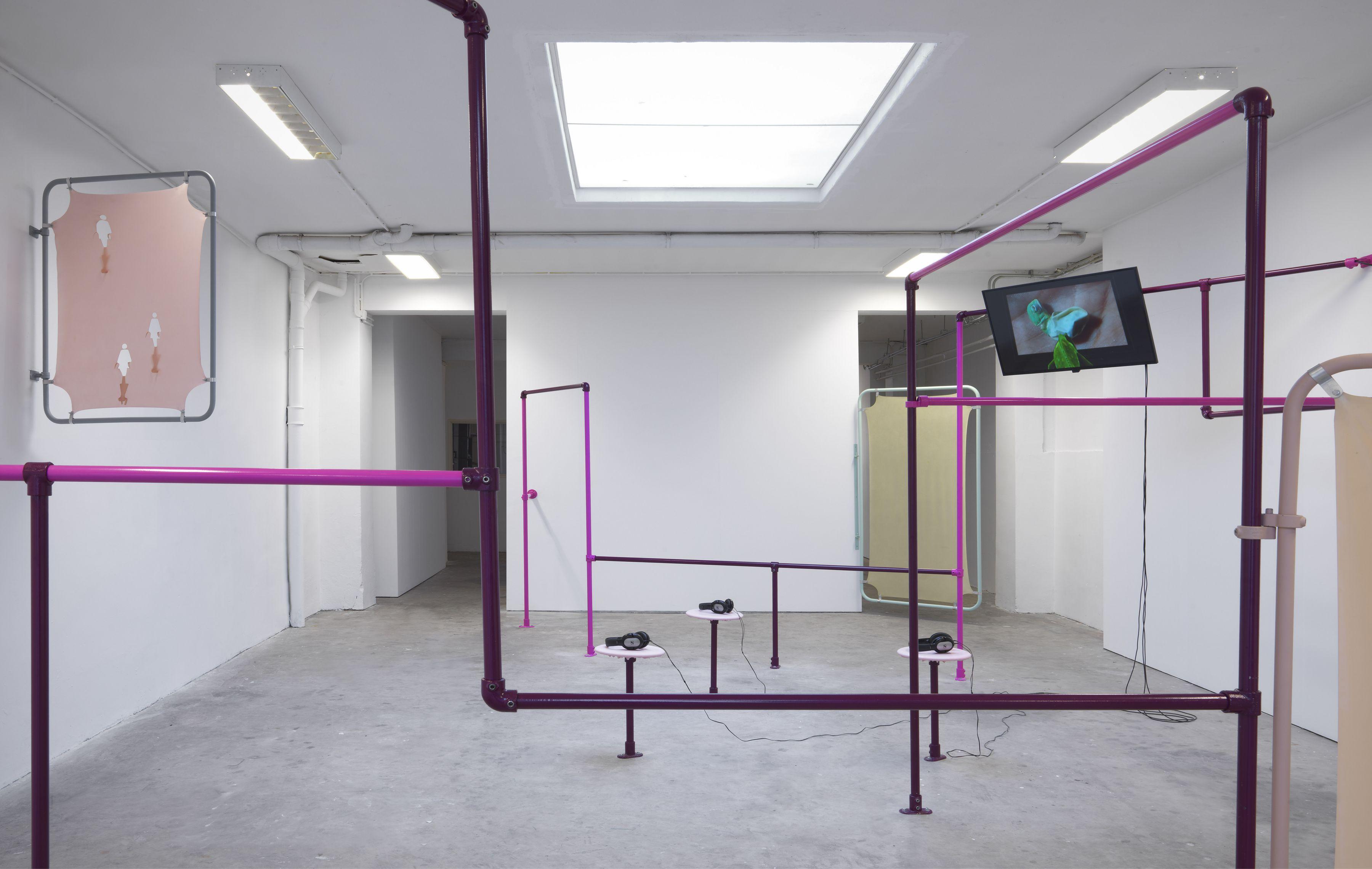 Installation view 'Breeder', Puck Verkade, Dürst Britt & Mayhew, 2017.