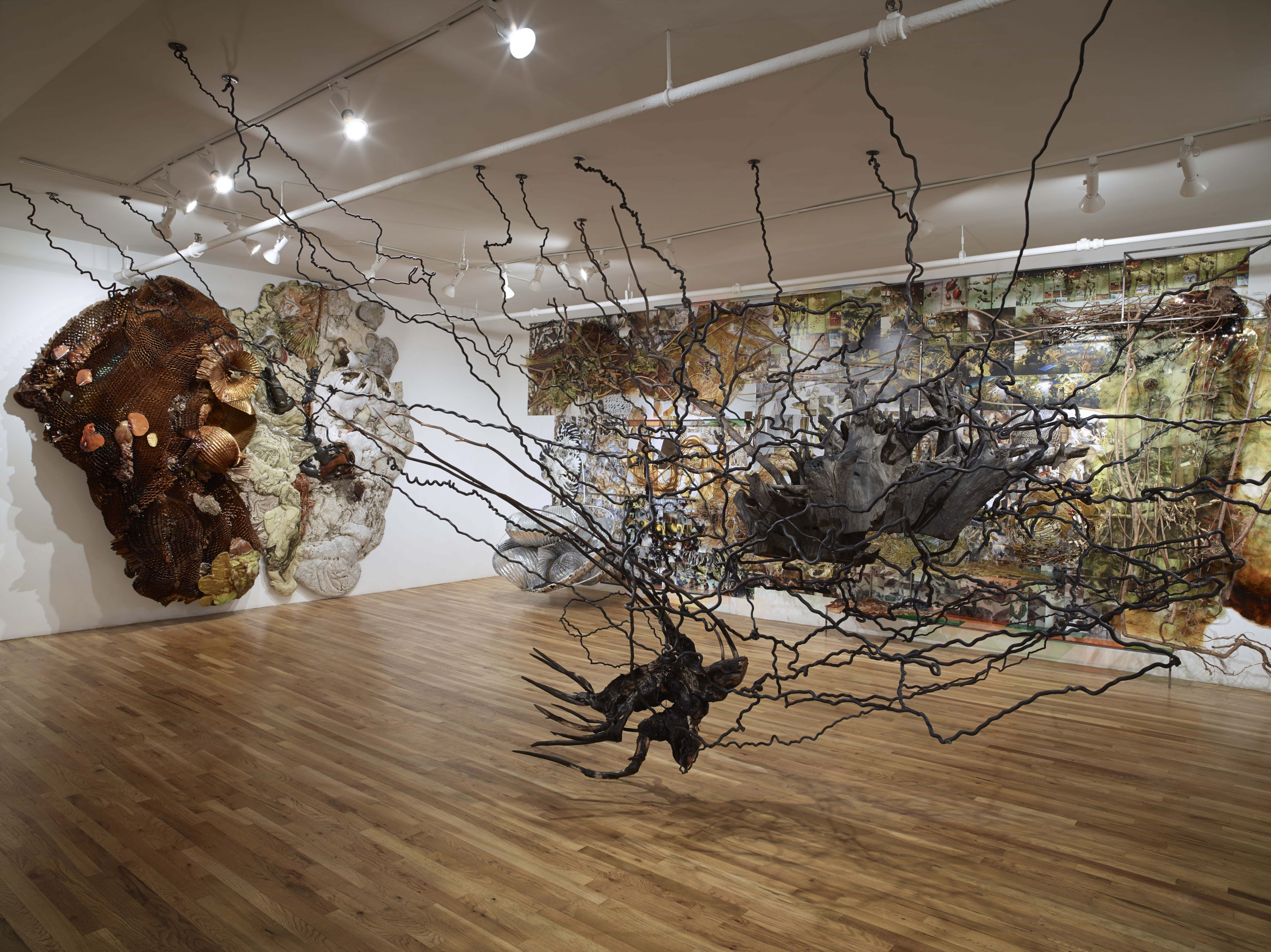 Second Nature, 2014, Installation at Pavel Zoubok Gallery, New York, NY