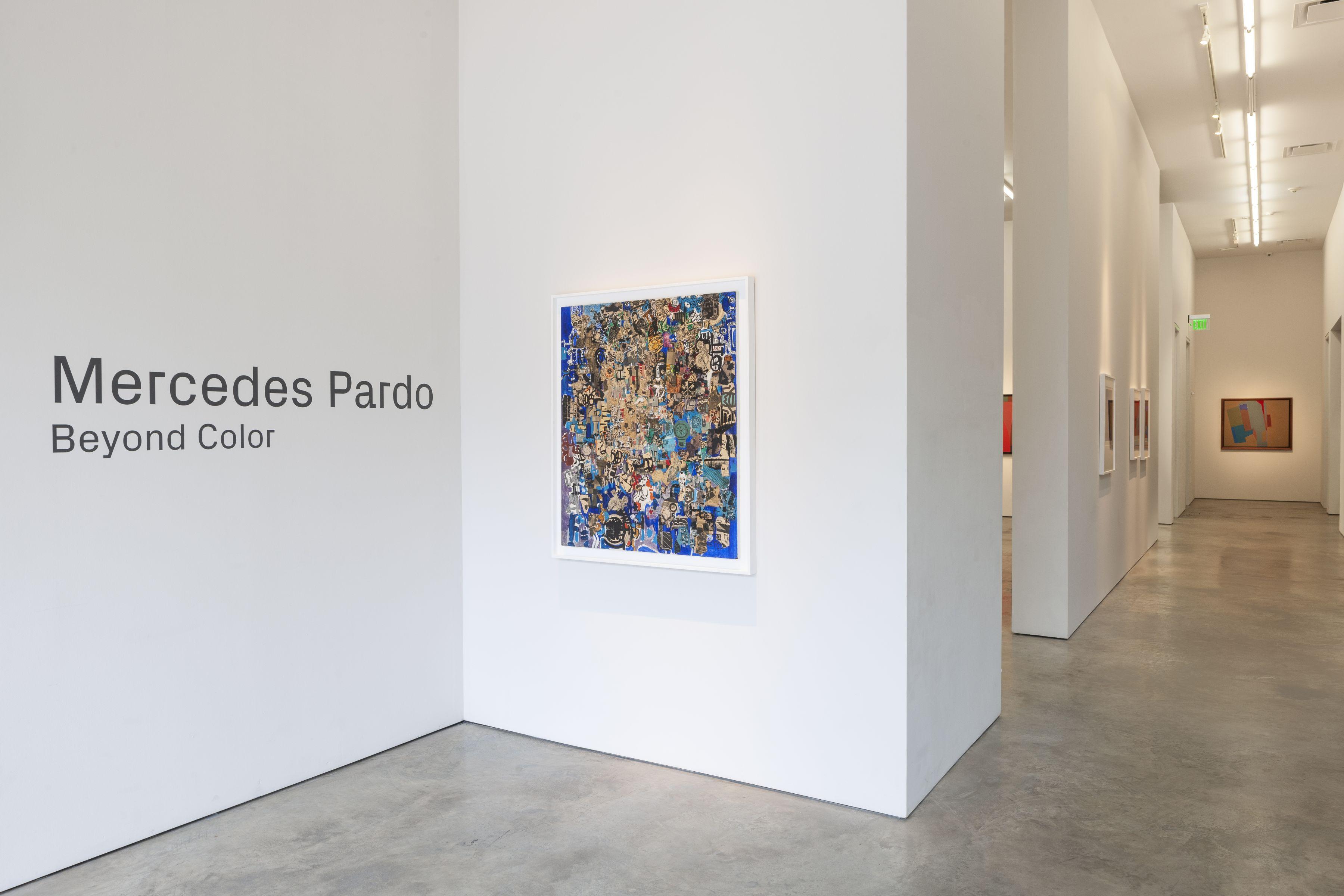 Mercedes Pardo:  Beyond Color