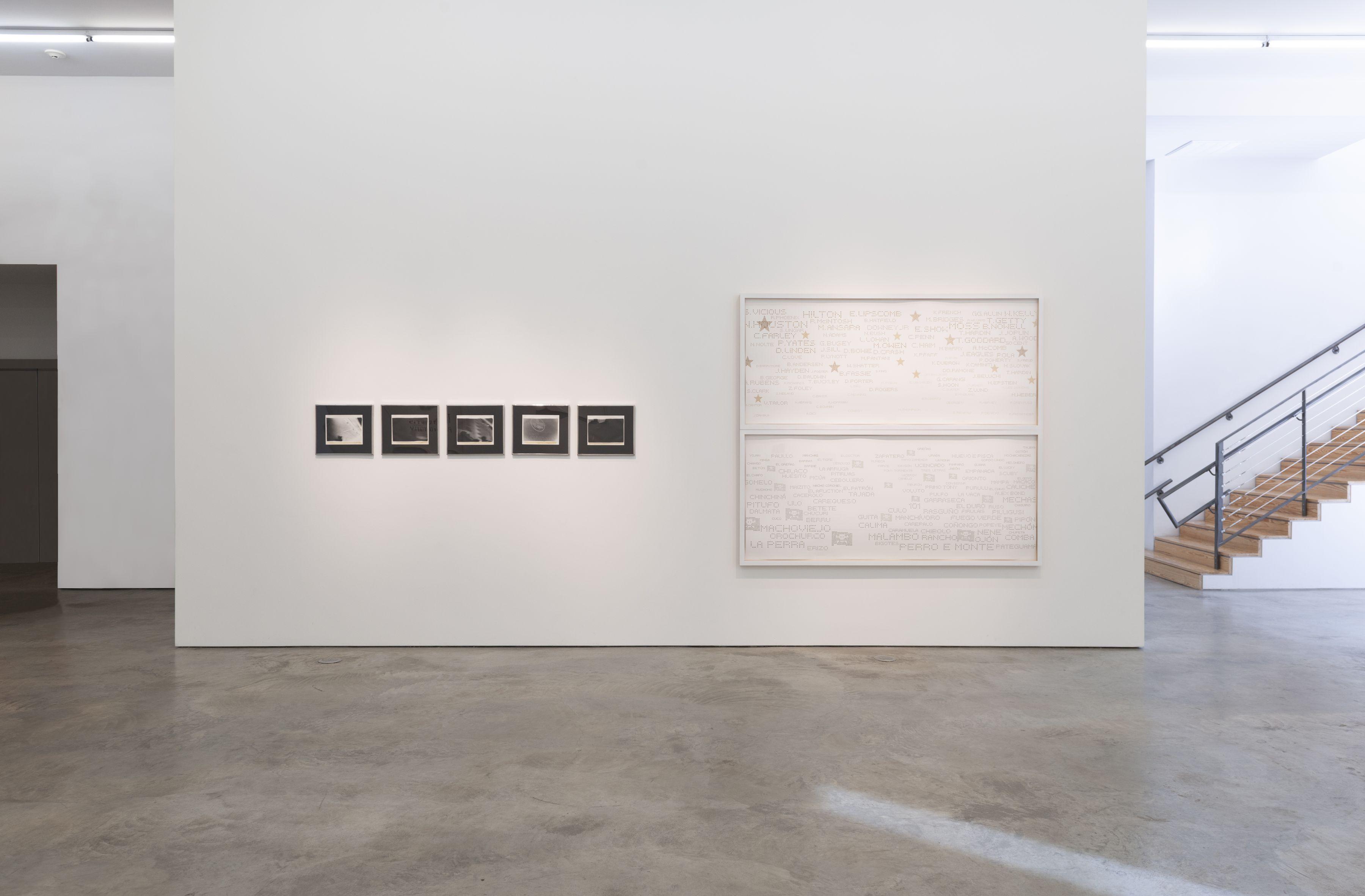 Miguel Ángel Rojas,Greed and Desire.Sicardi | Ayers | Bacino, 2018