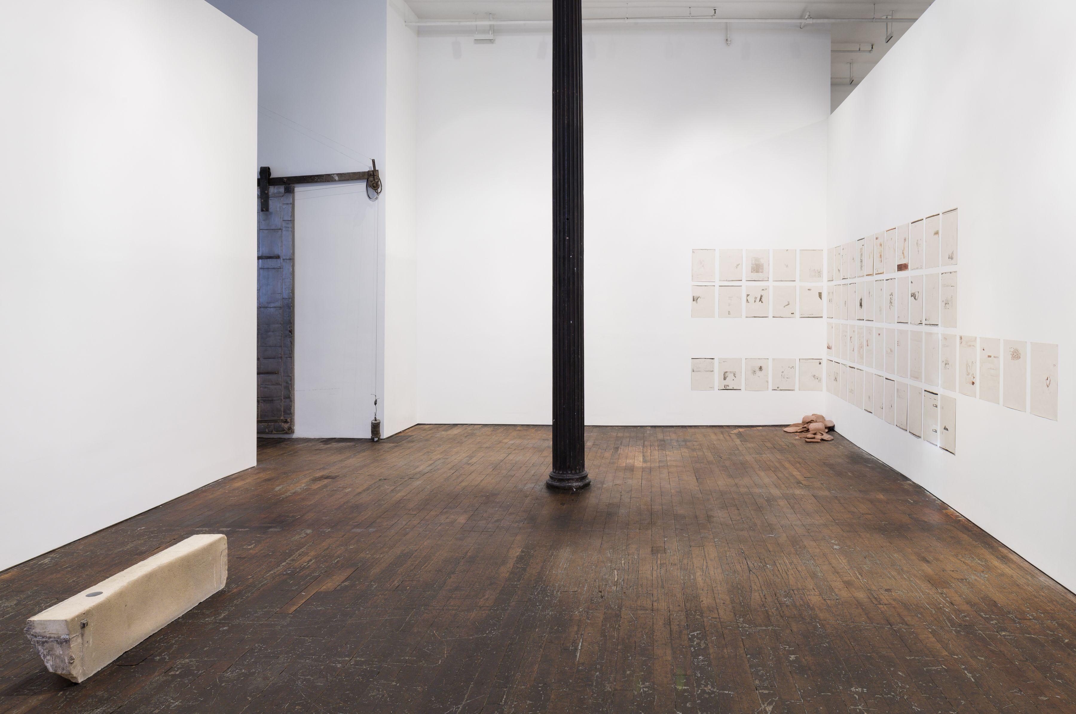 Lucy Skaer: Random House– installation view 2