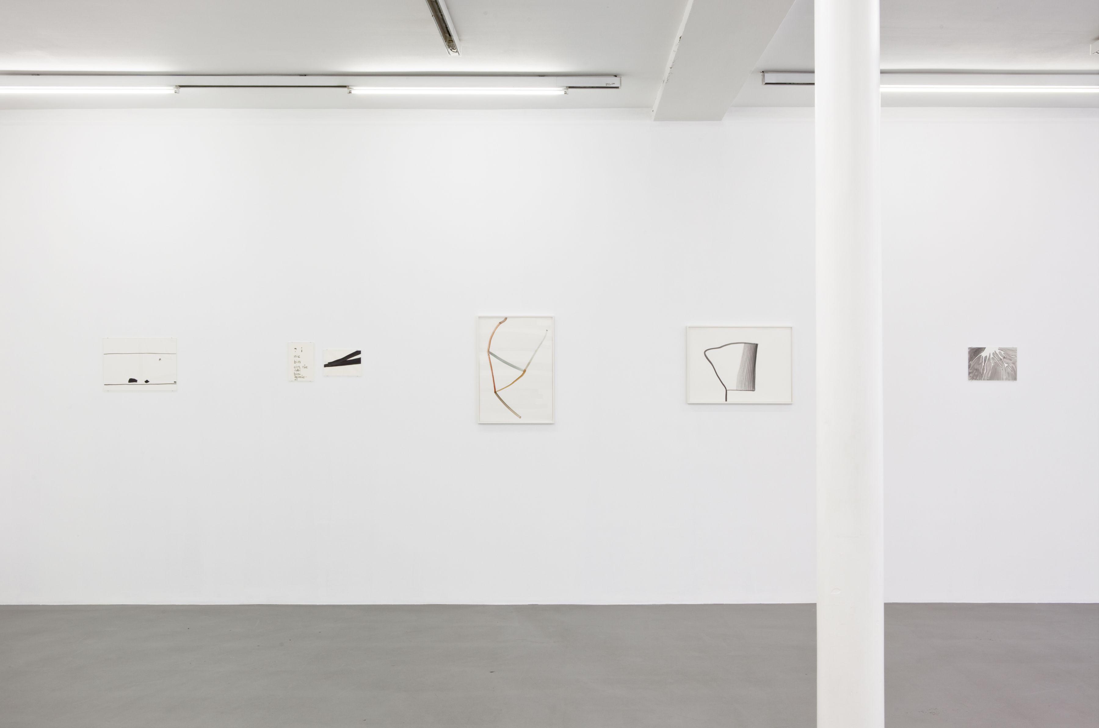 Silvia Bächli, Peter Freeman, Inc., Paris