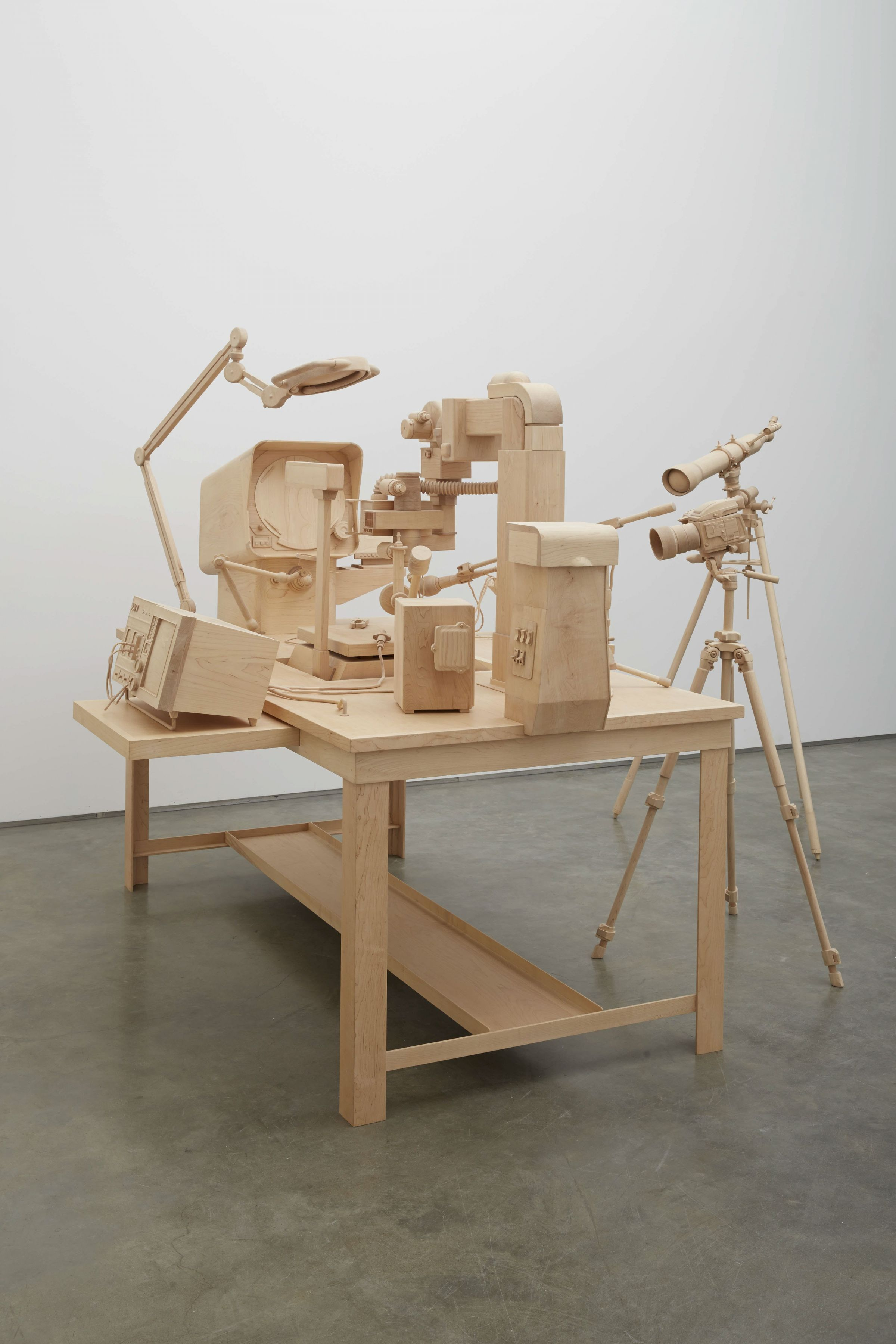 Scrutiny, 2014 [detail], Maple