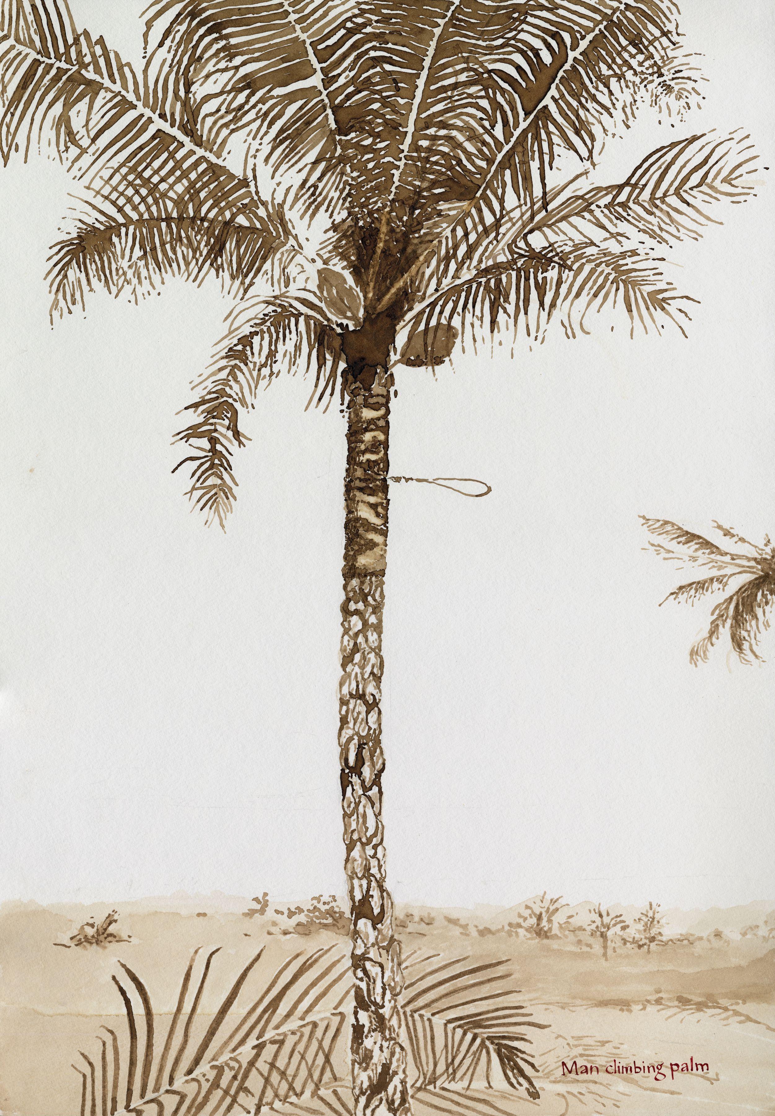 man climbing palm artwork
