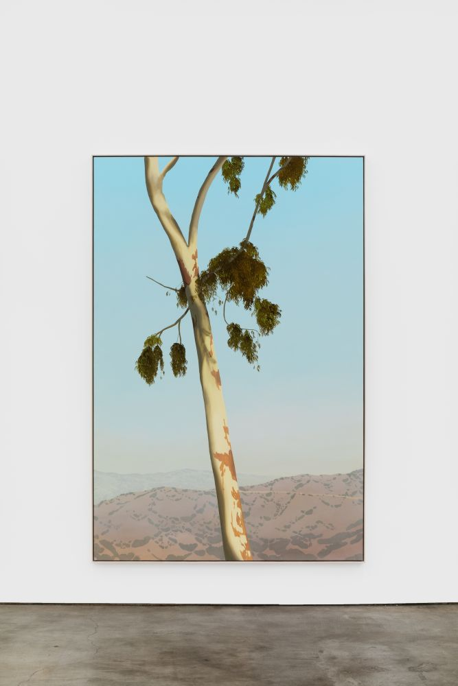 Jake Longstreth In Glendale (Eucalyptus 5), 2020 Oil on muslin 84 x 57 in (85 x 57.25 in, framed) 213.4 x 144.8 cm (216 x 145.5 cm, framed) (JLO20.004)